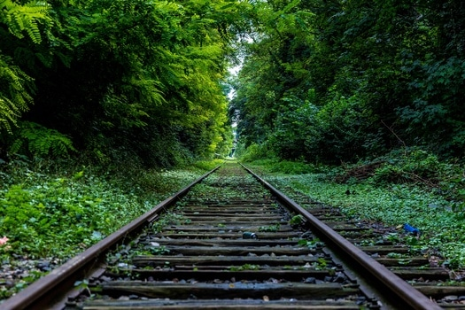 Free stock photo of nature, forest, industry, rails