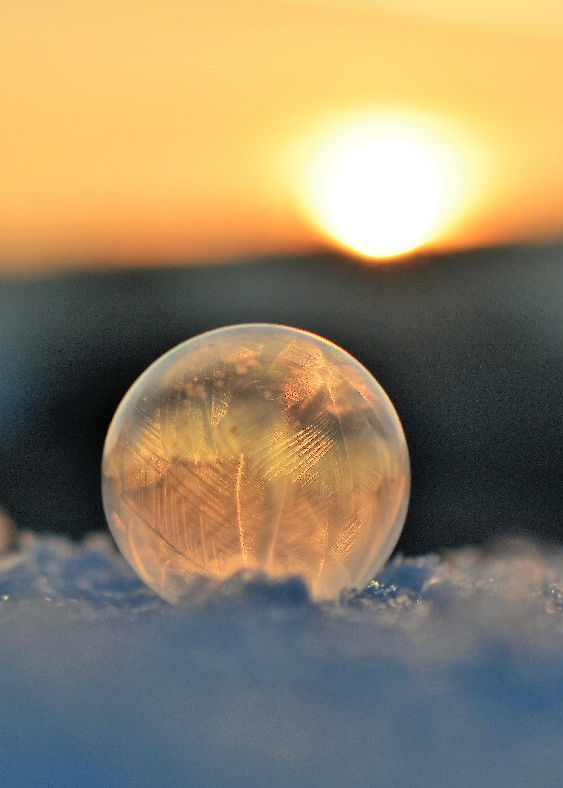 free stock photos of soap bubbles pexels