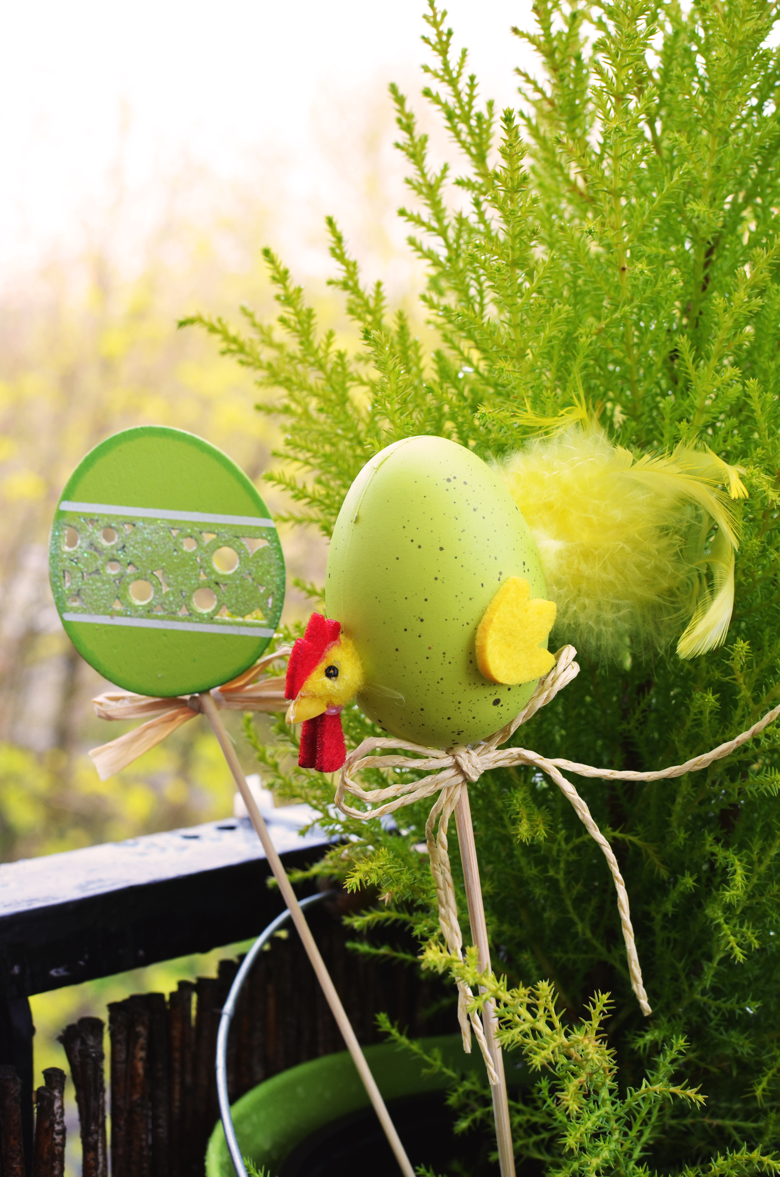free stock photo of decoration easter