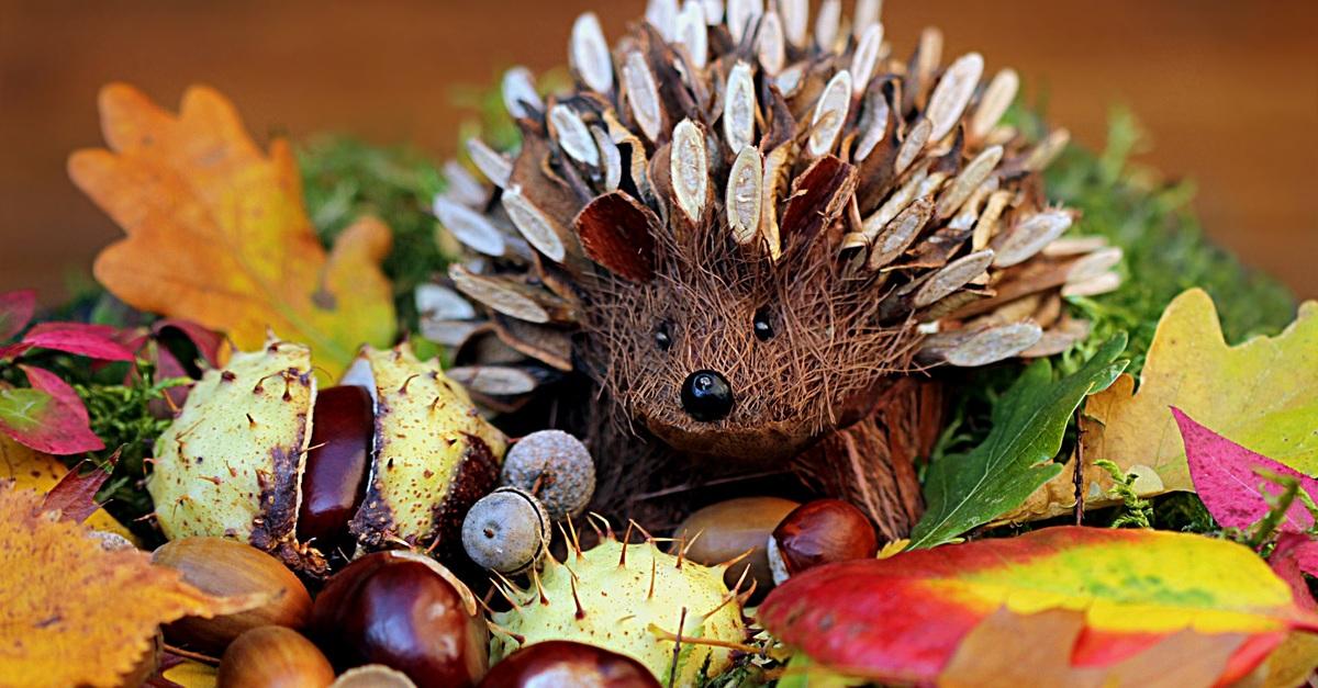 Brown porcupine artwork free stock photo for Bilder herbstdeko