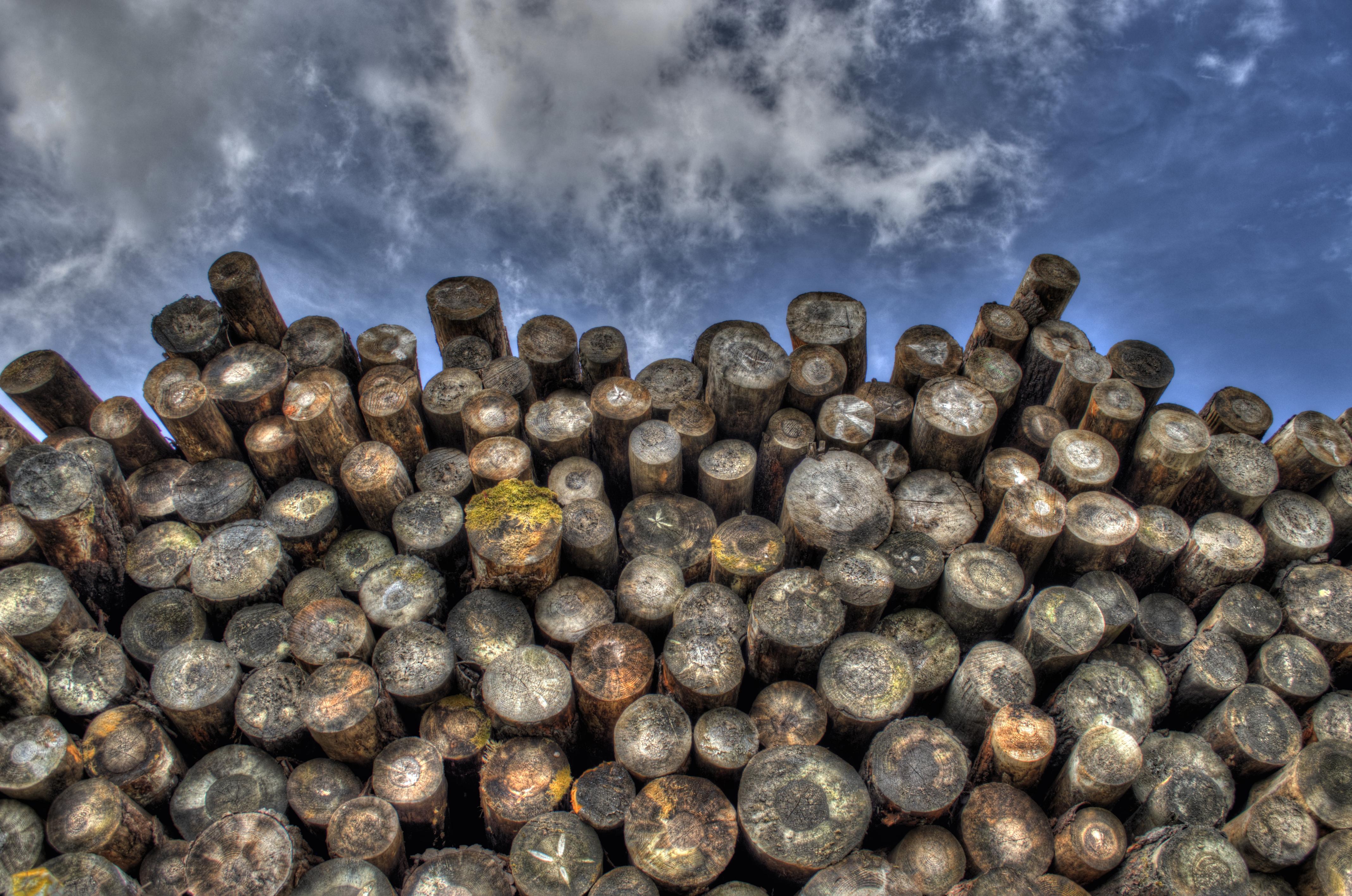 Spruce Whitewood Stacking
