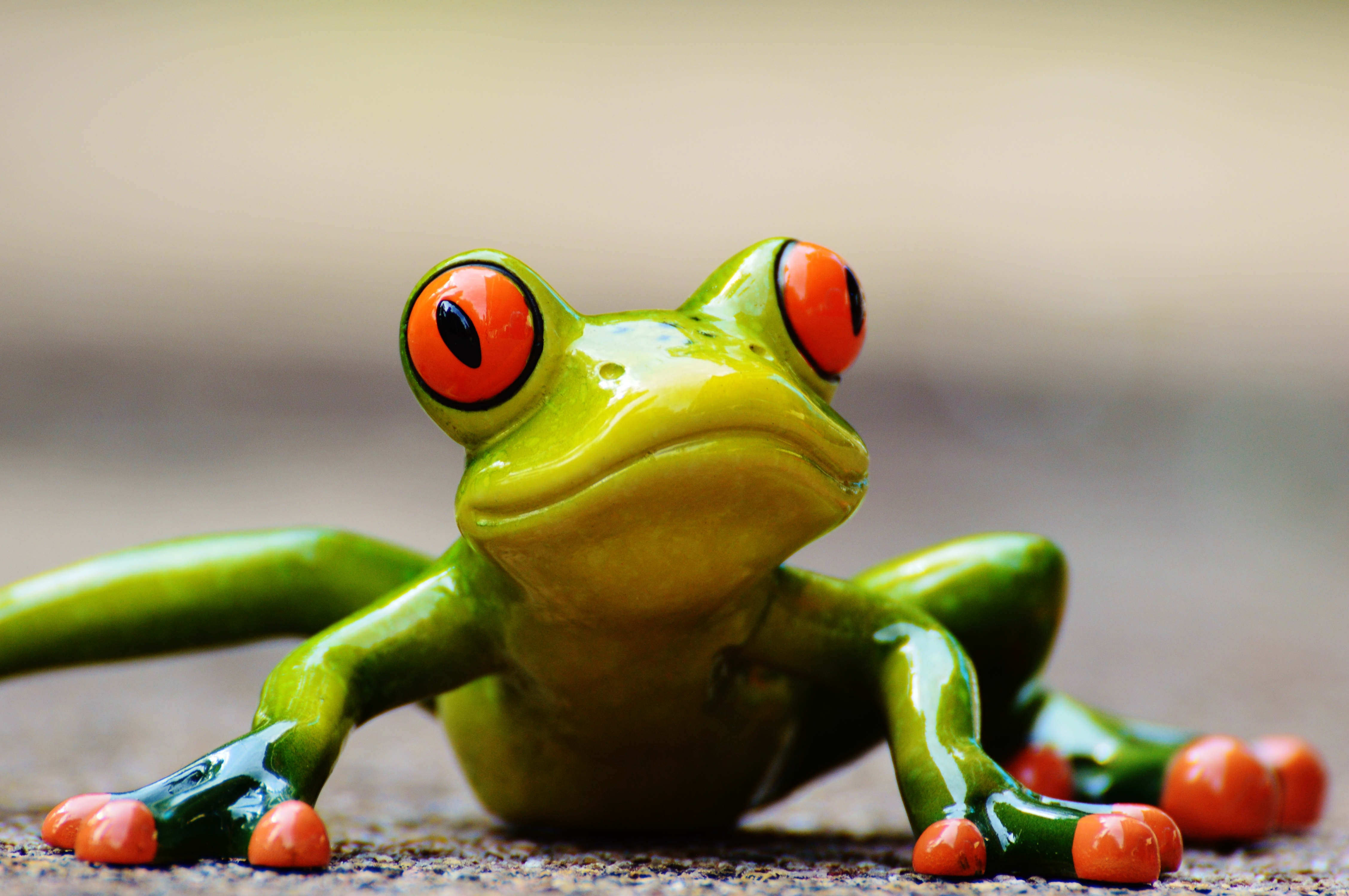 free stock photo of decoration frog green