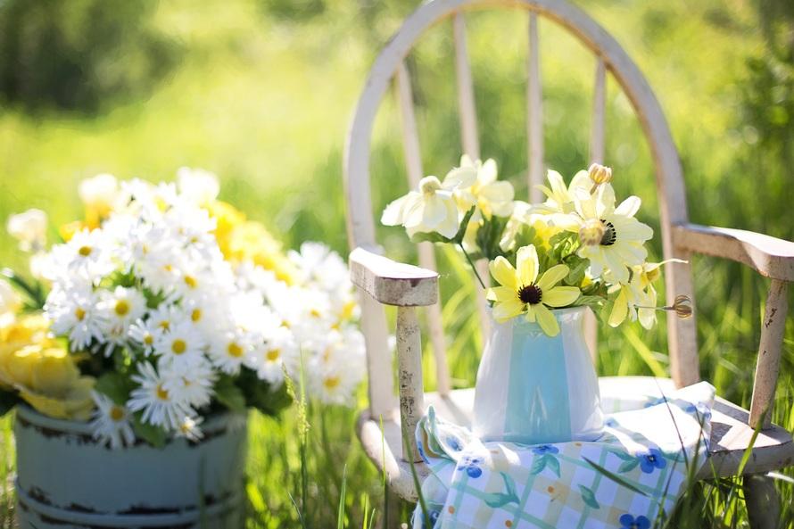 flowers, summer, garden