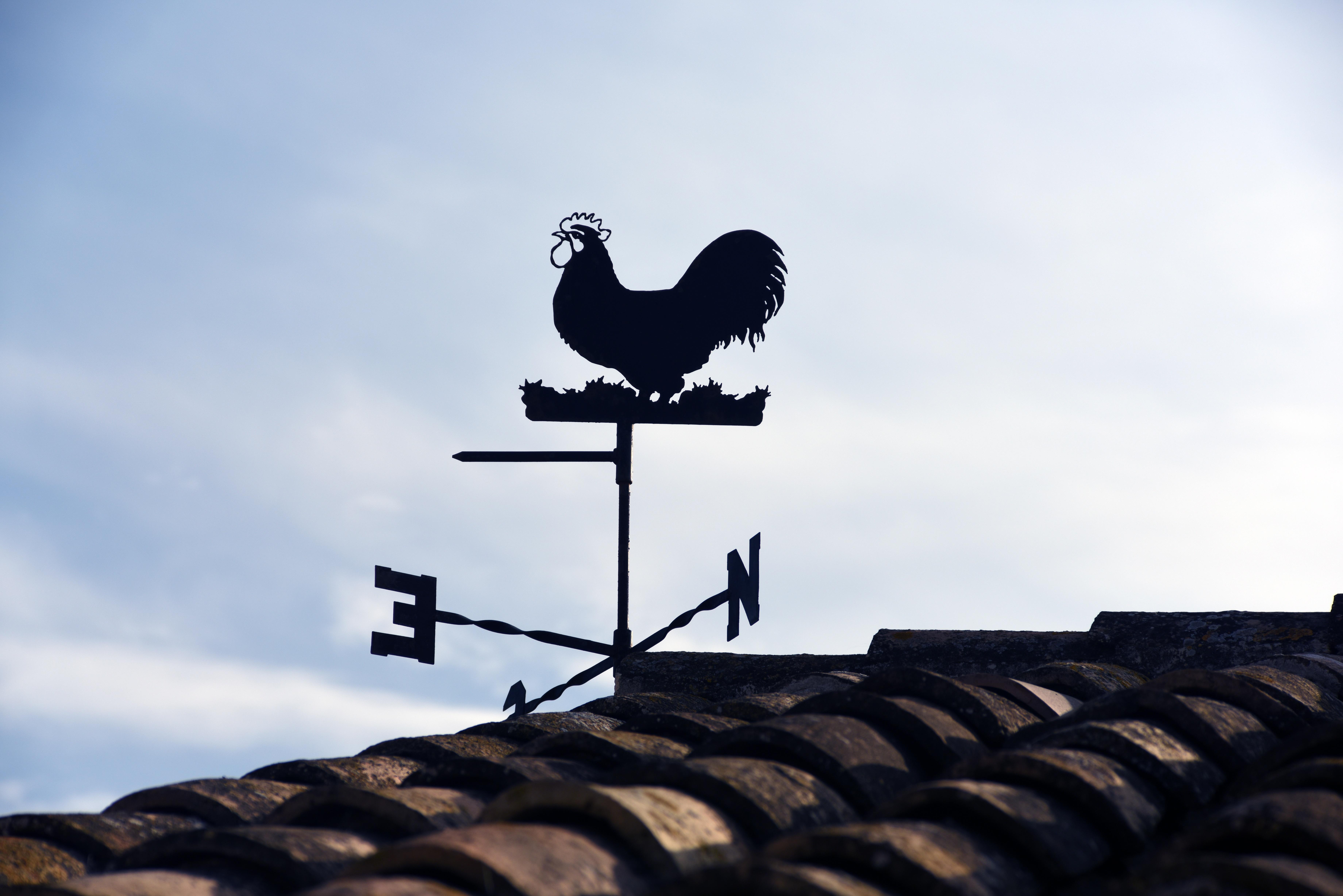 Wind Vane Beside Roof · Free Stock Photo