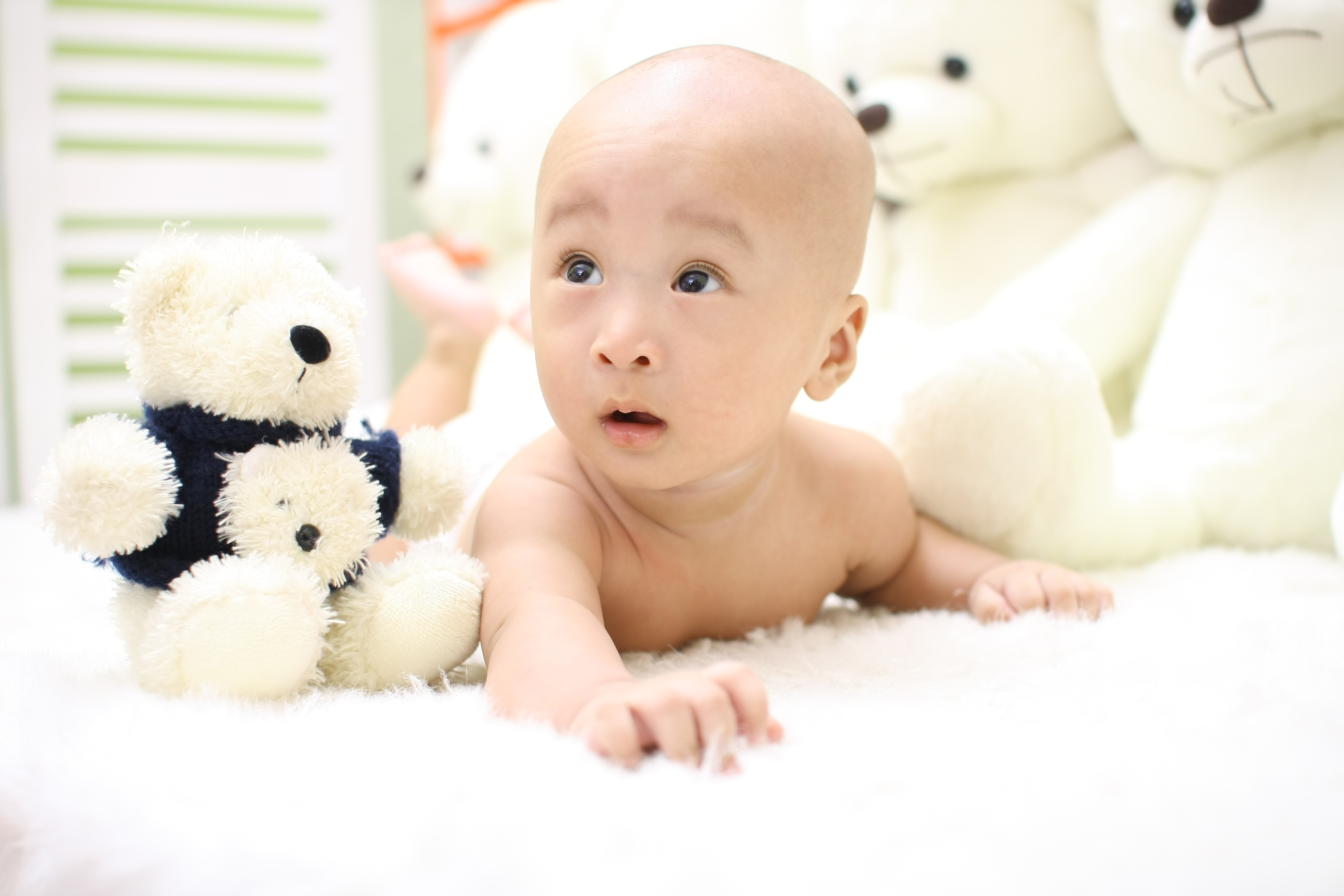 Free stock photo of adorable asian baby free download voltagebd Choice Image