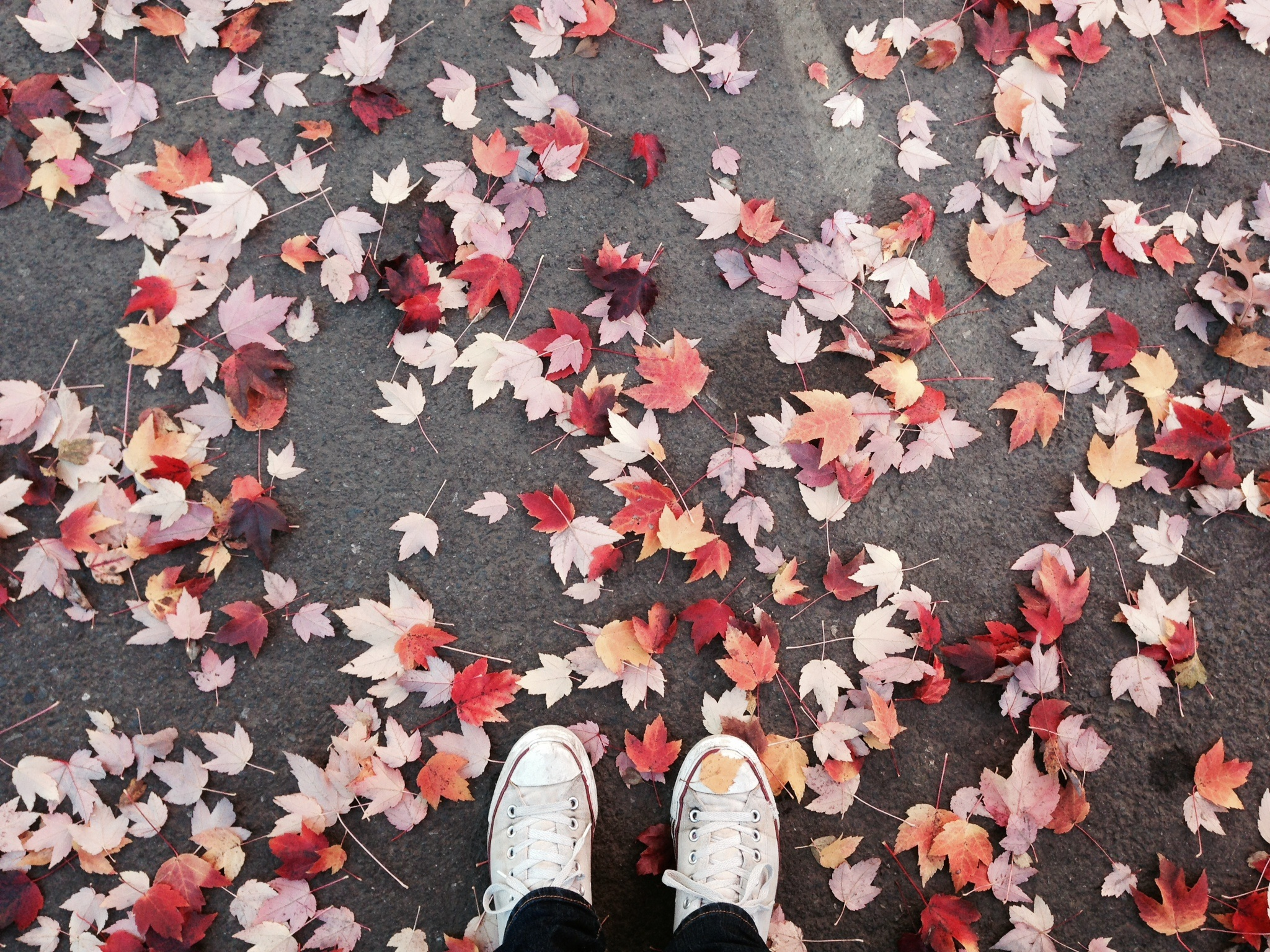 14 Inspirational Quotes About Changing Seasons To Get You Ready For Fall