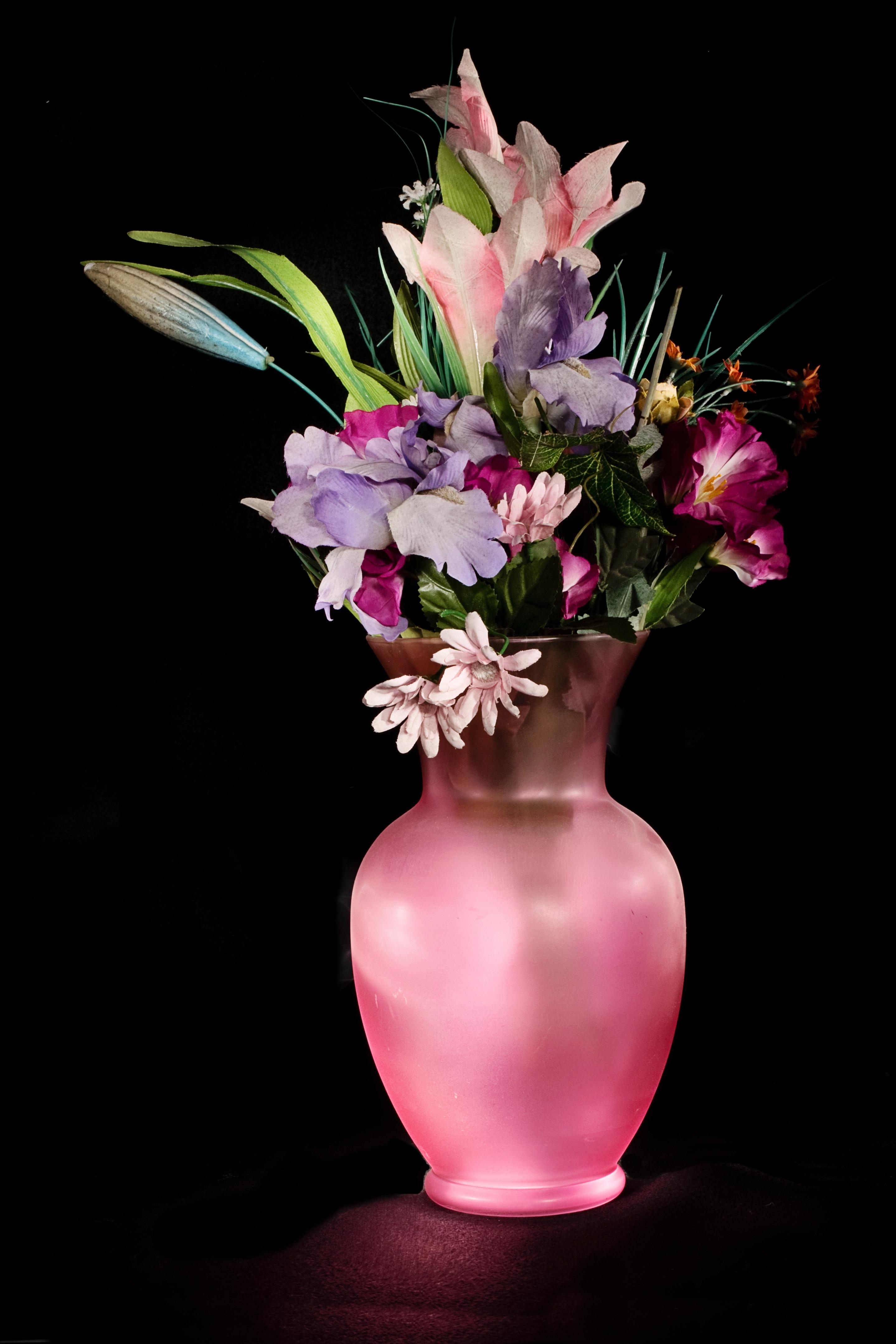 Pink Vase Free Stock Photo