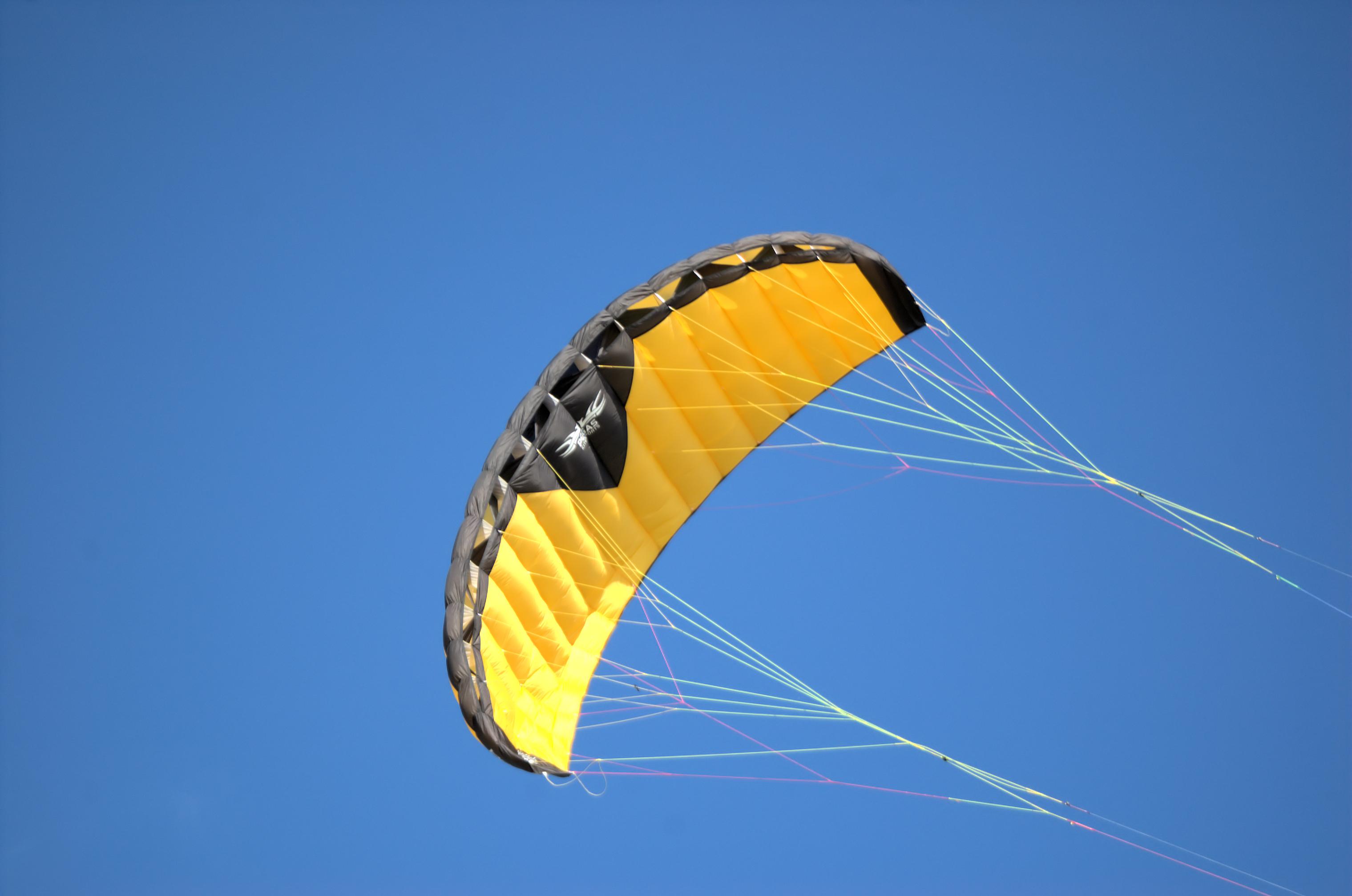 Afbeeldingsresultaat voor kite
