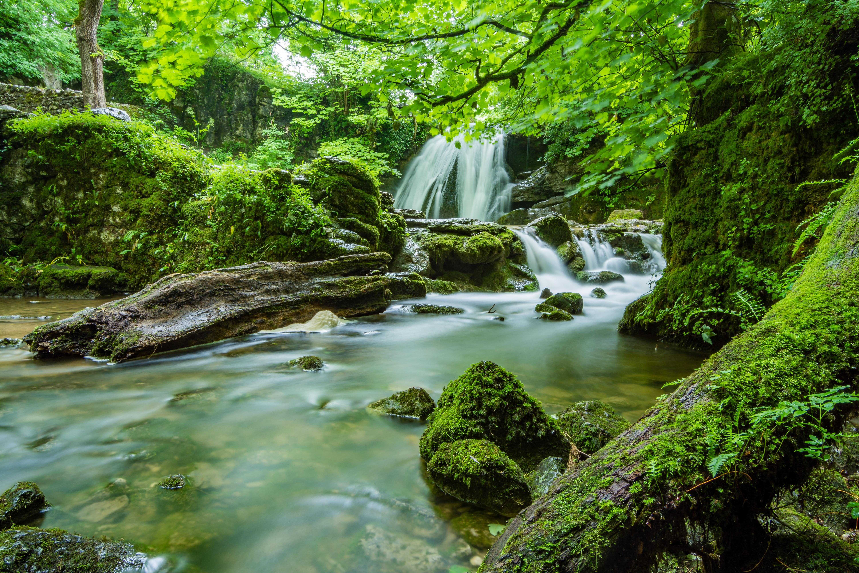 Free Stock Photo Of Beautiful Cascade Creek