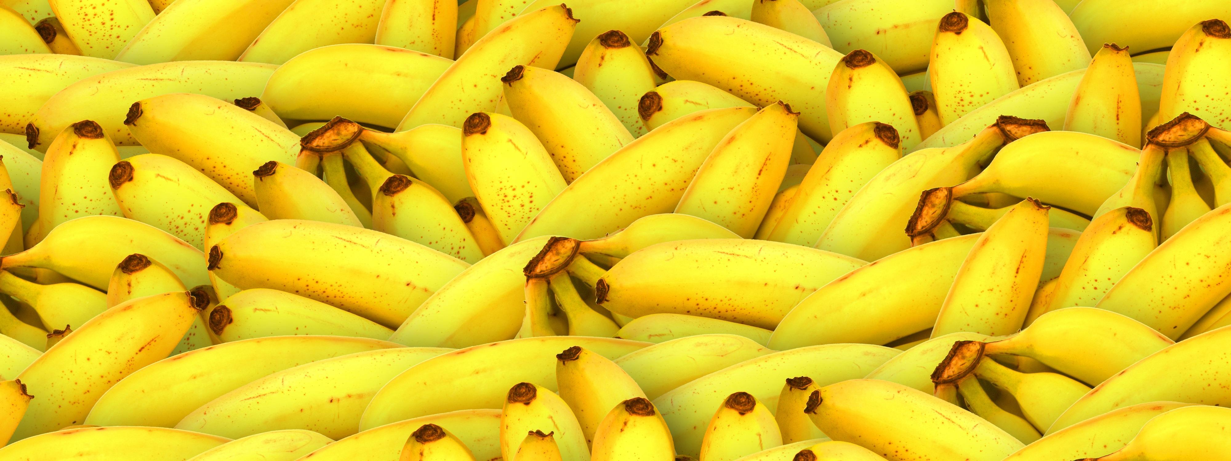 Free Stock Photo Of Banana Banner Food