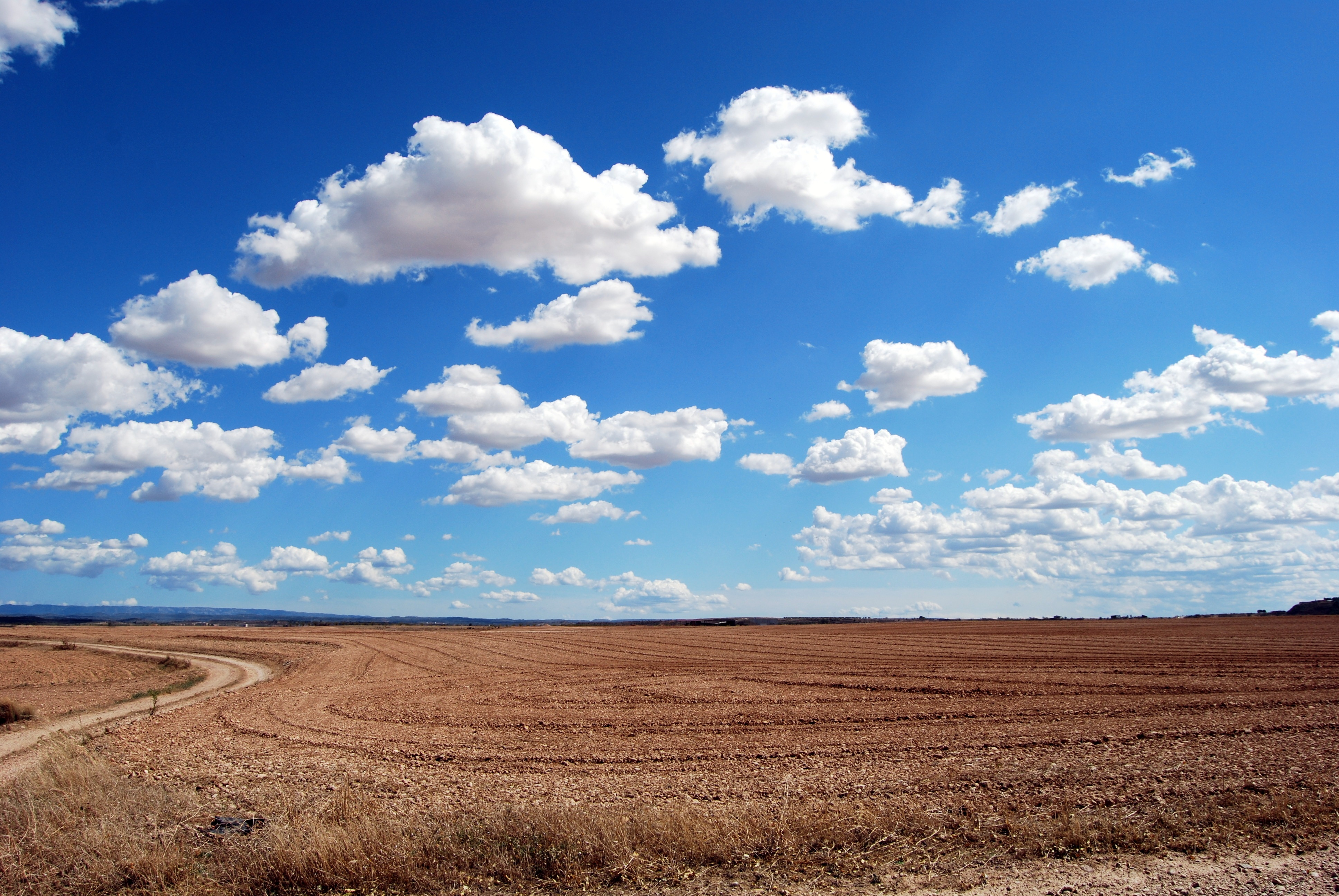 Brown Field and Blue Sky Free Stock Photo