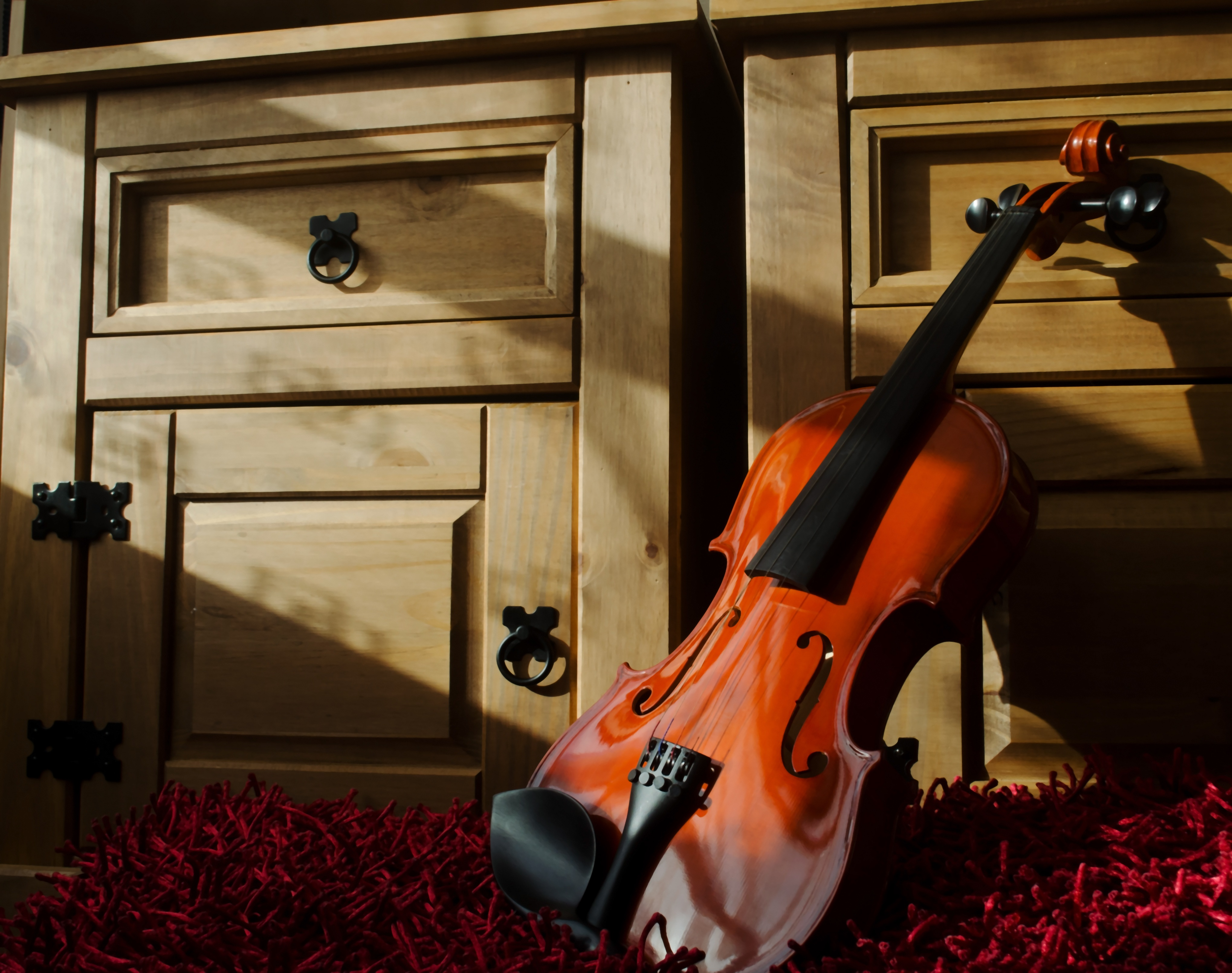 Free stock photo of acoustic, bowed string instrument ...