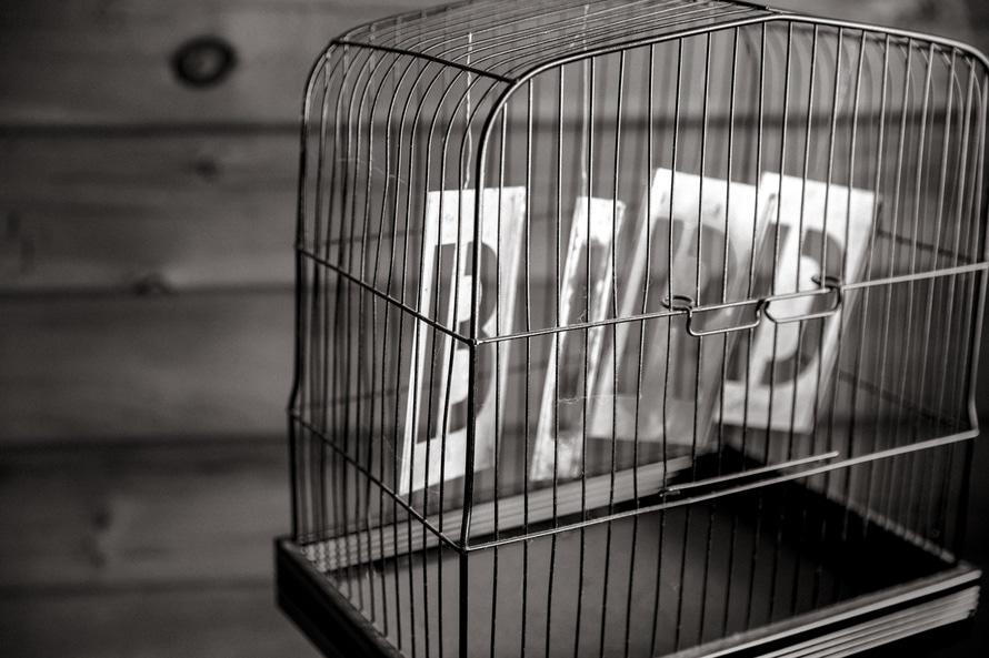 black-and-white, bird, birdcage