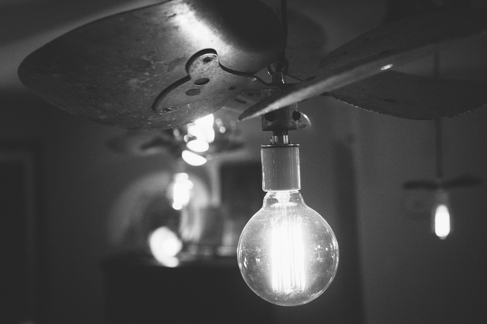 Free stock photo of black-and-white, idea, light bulb