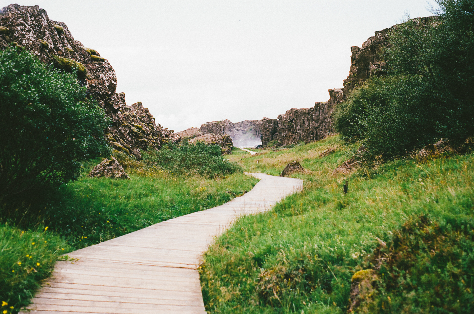 Free stock photo of hiking path pathway Pathway images