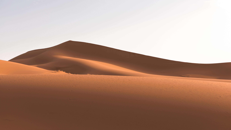 pdf terms of use black desert