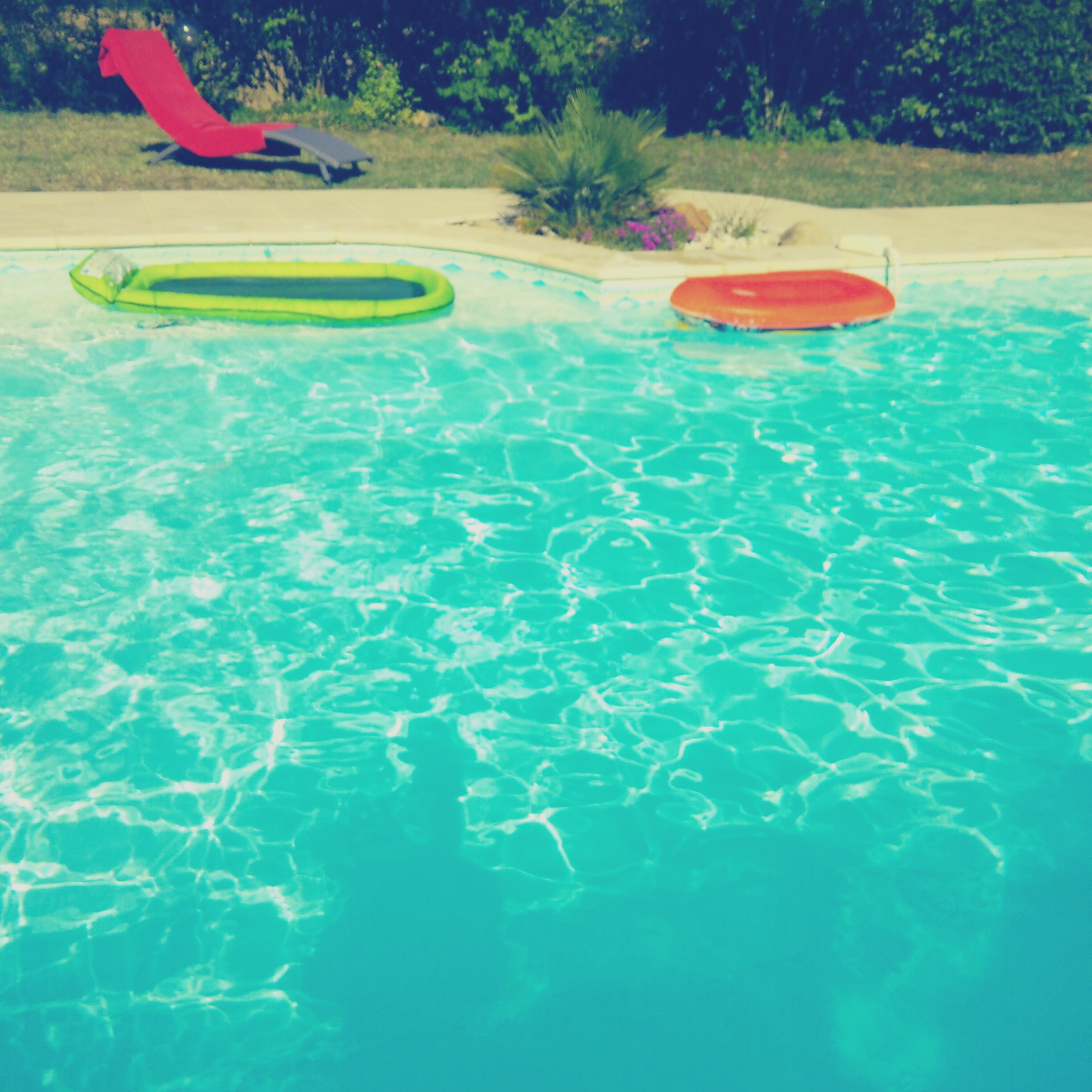 Free stock photo of pool toys summer swimming pool