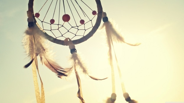 Free stock photo of sunny, summer, dream, catcher