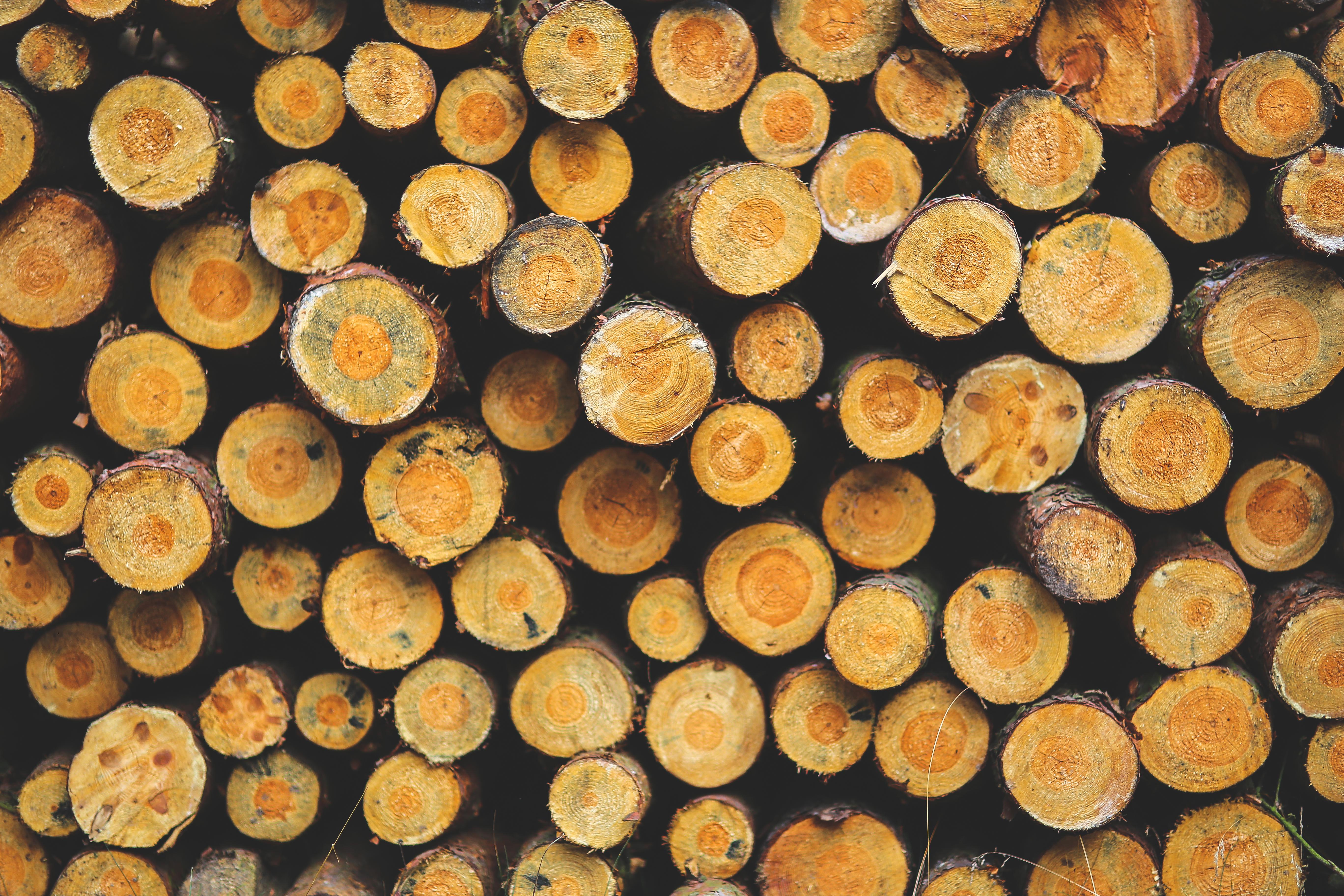 5 regalos hechos en madera natural