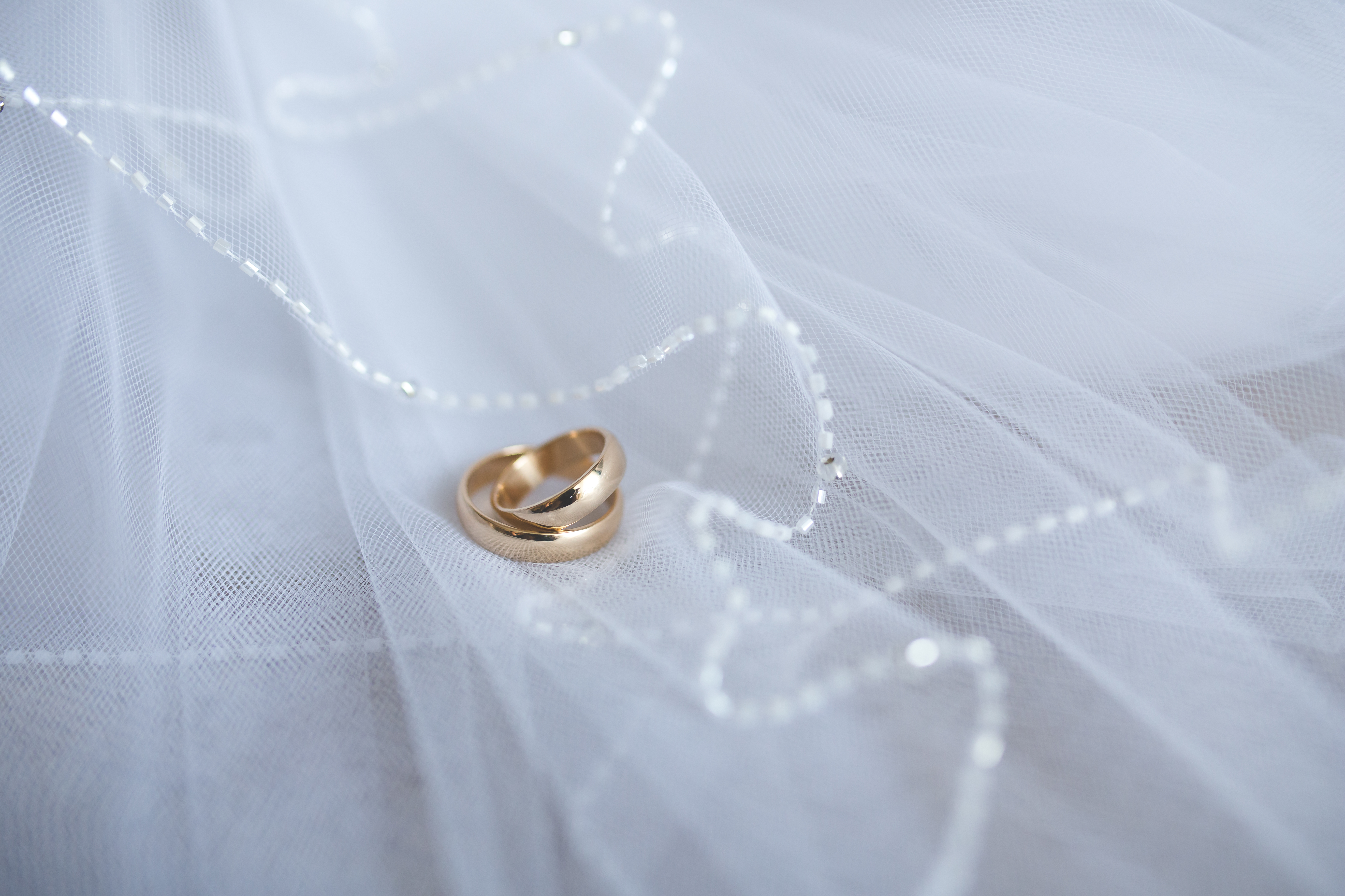 free download - Free Wedding Rings