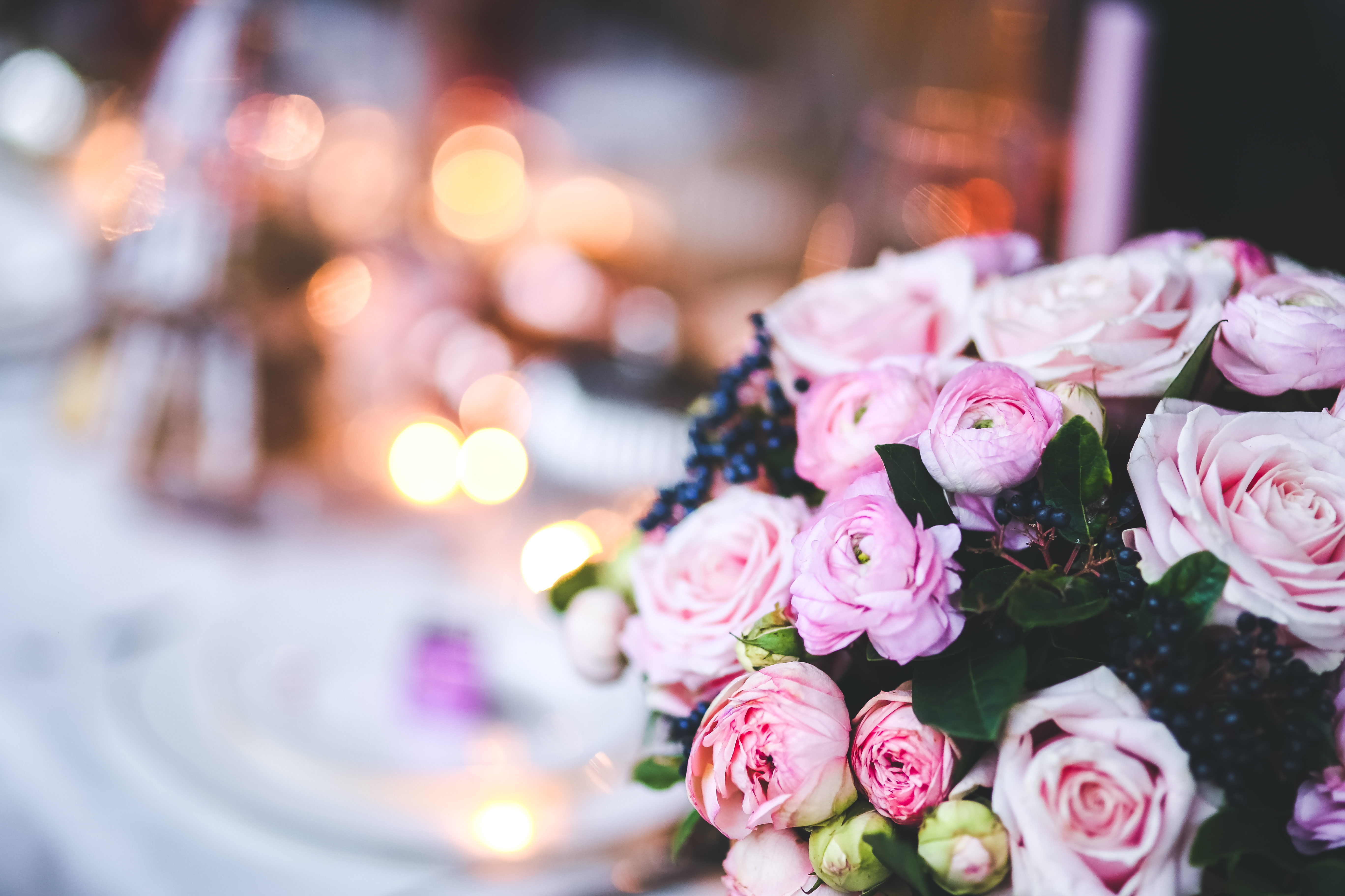 Lovely Pink Flowers with Bokeh · Free Stock Photo