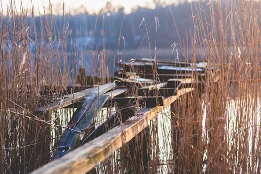 Free stock photo of landing stage, broken, lake, pier