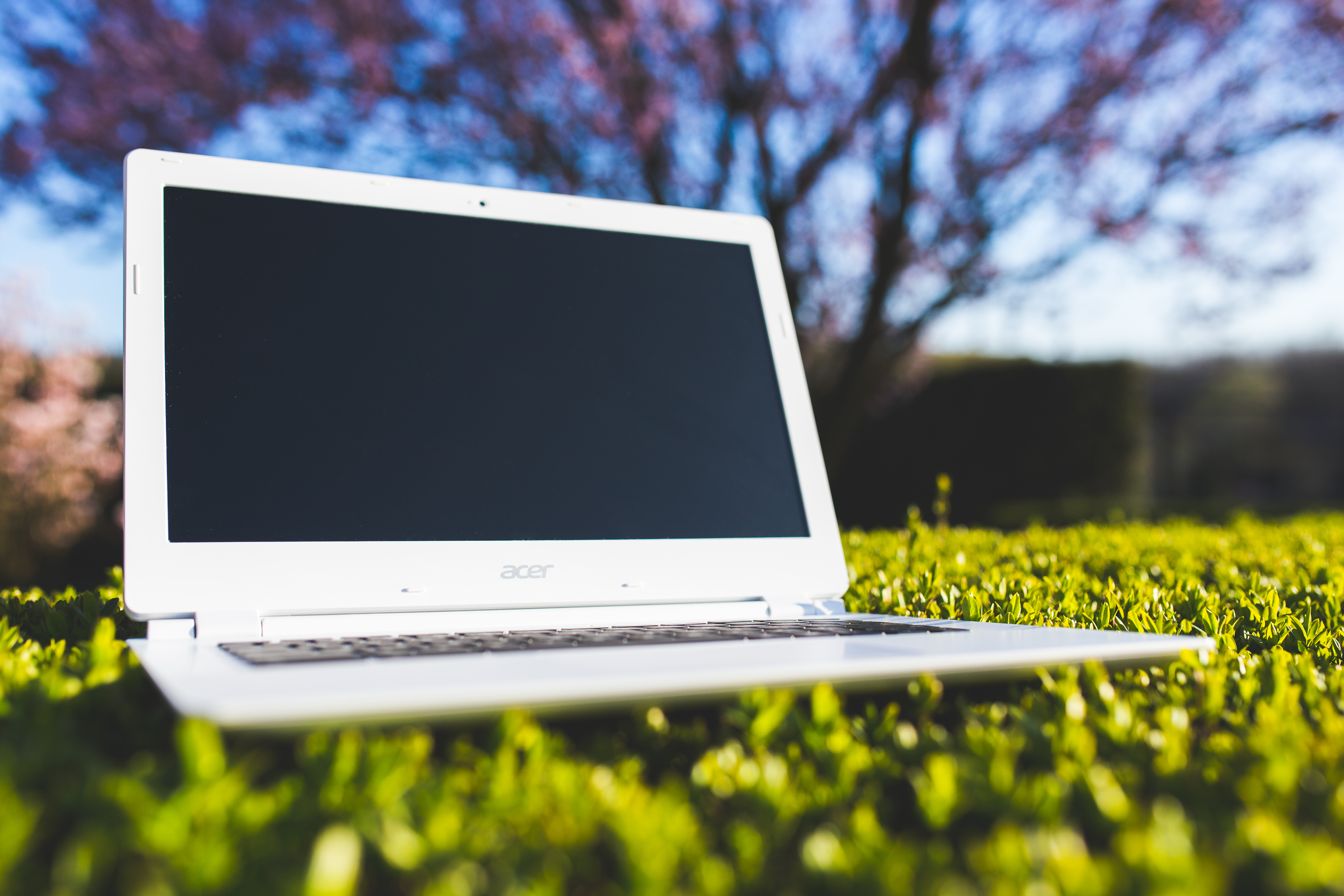 White Laptop On A Green Meadow Free Stock Photo