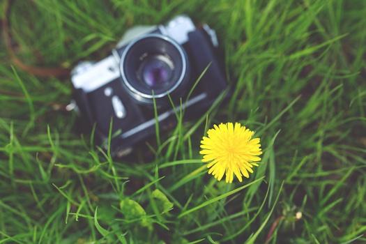 camera, photographer, yellow, photography