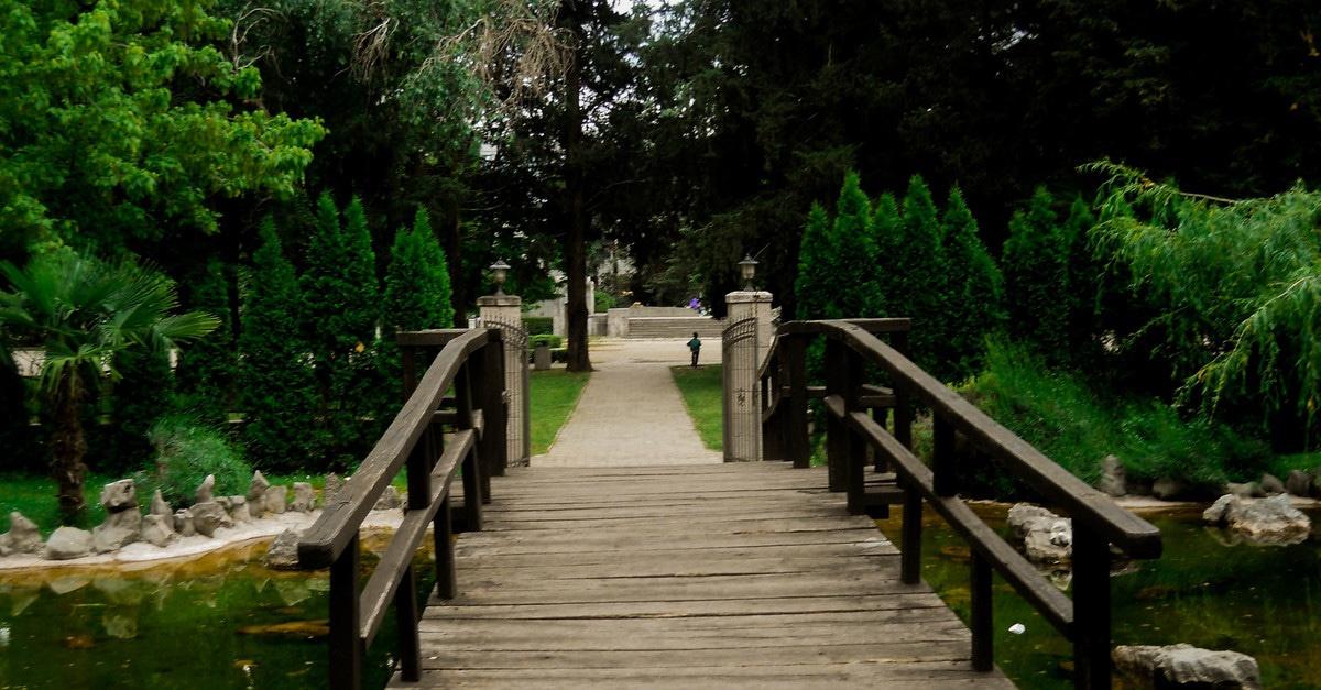 Free stock photo of nature, bridge, park