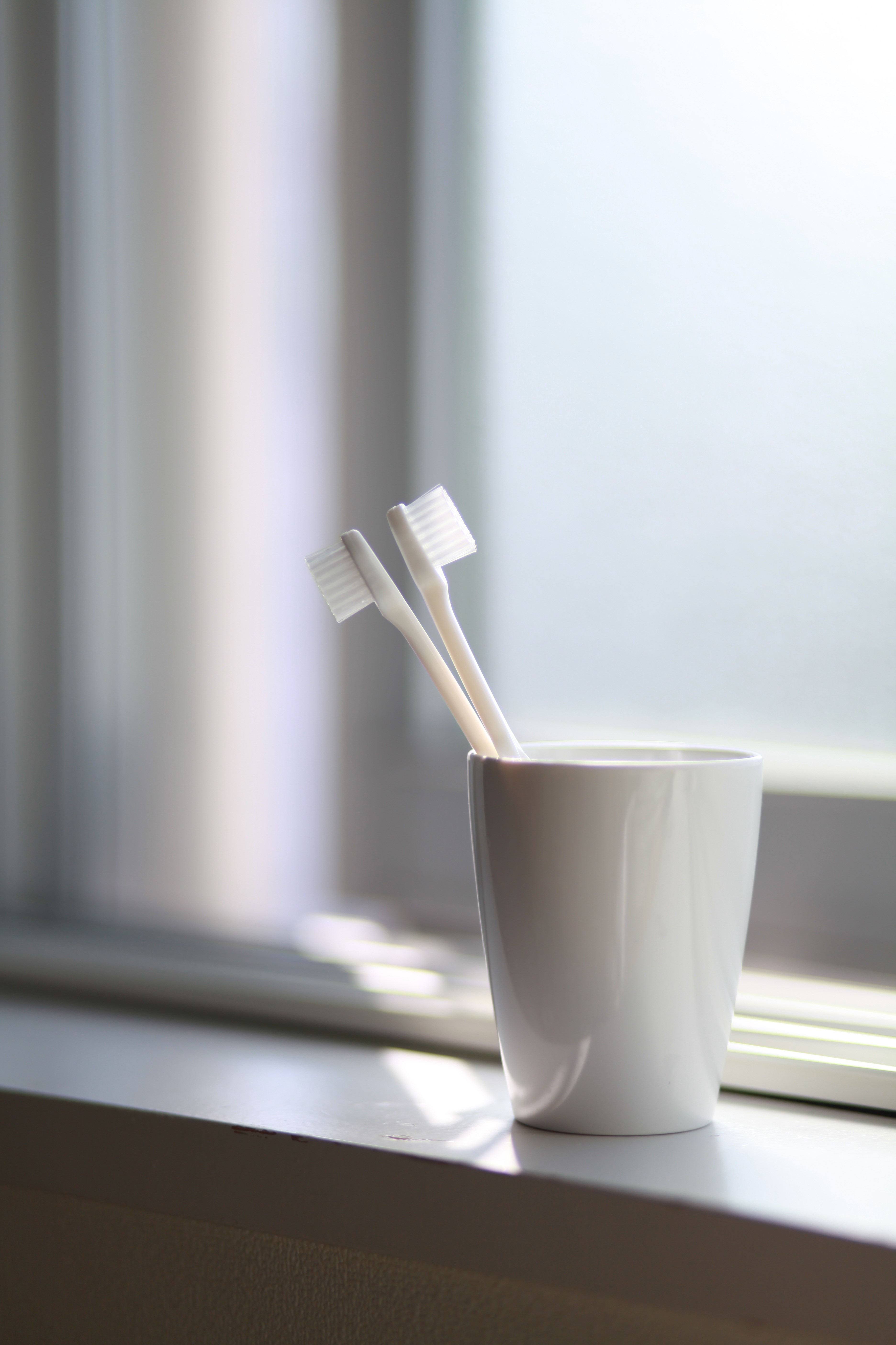 Two White Toothbrush Inside The White Ceramic Cup 183 Free