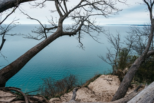 sea, tree, cliff
