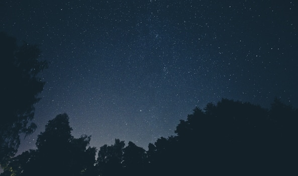 Free stock photo of sky, night, space, trees