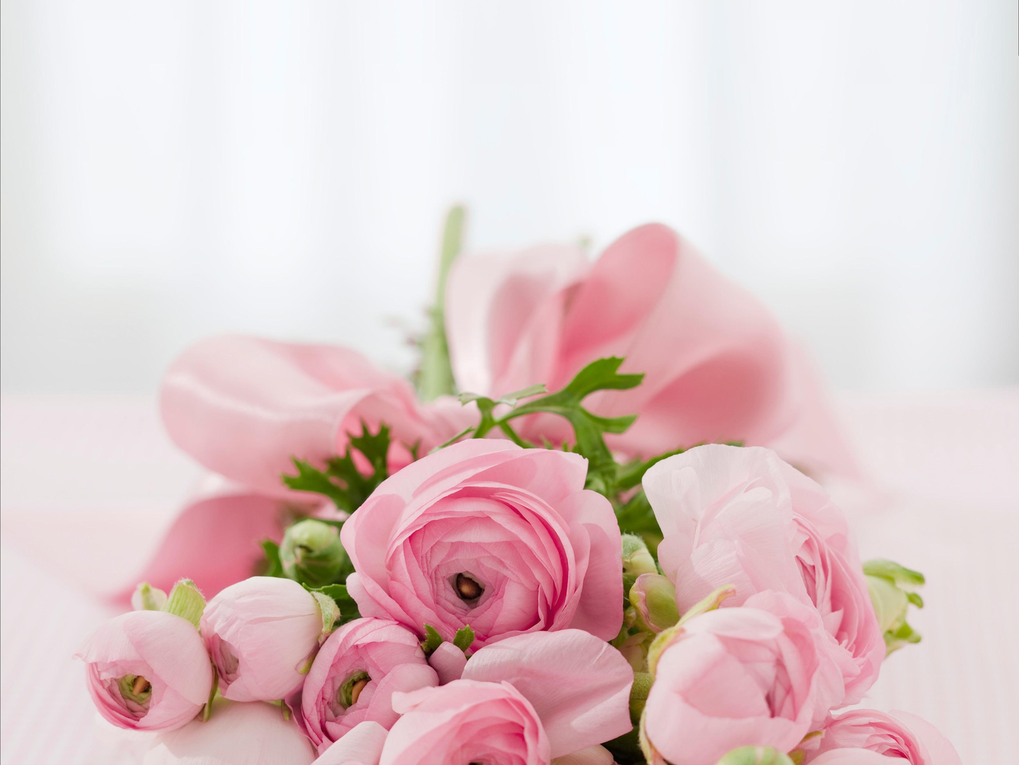 roses-bouquet-congratulations-arrangement-68570.jpeg (3500×2626)