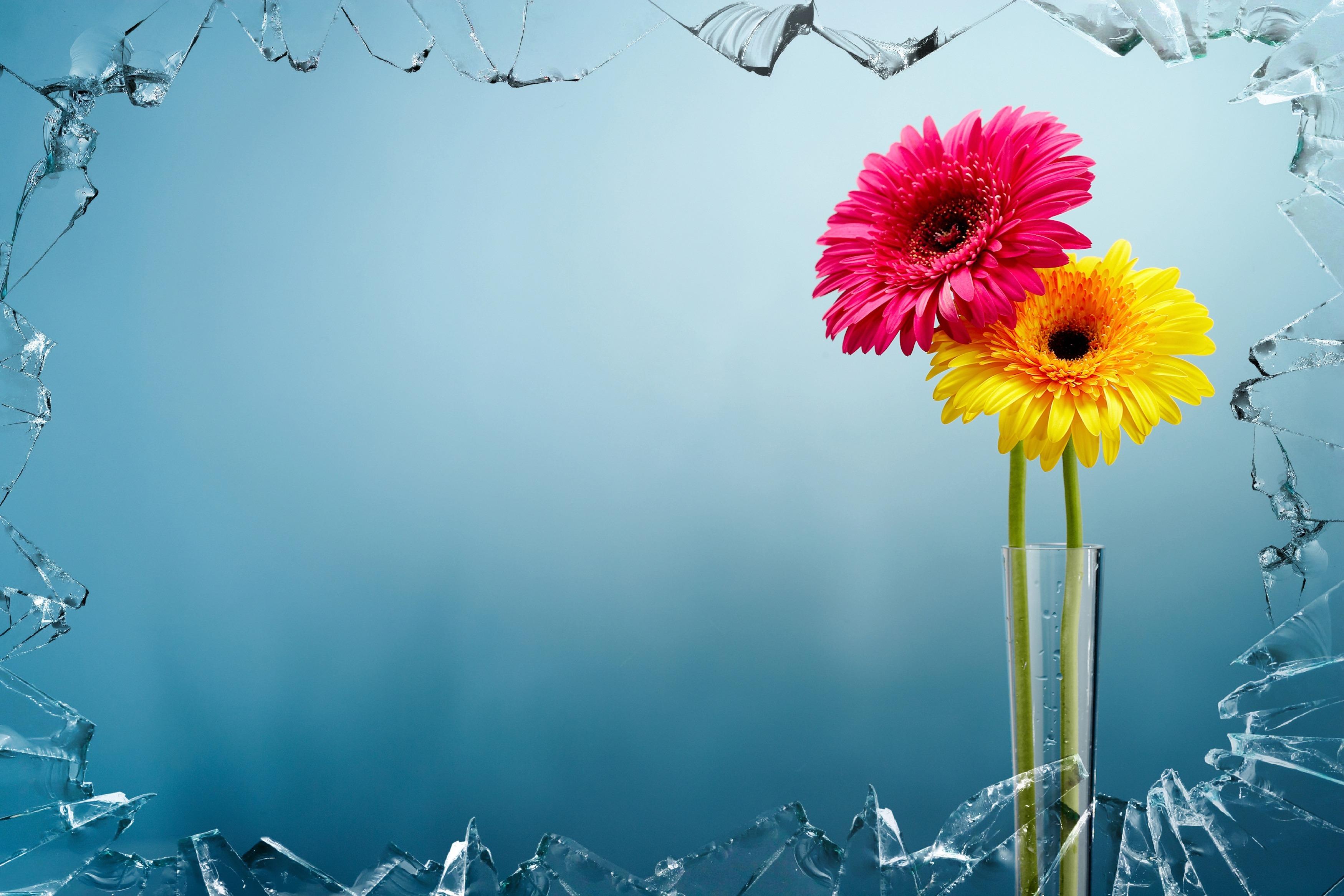 artwork-colorful-art-flowers-68604.jpeg (3500×2334)
