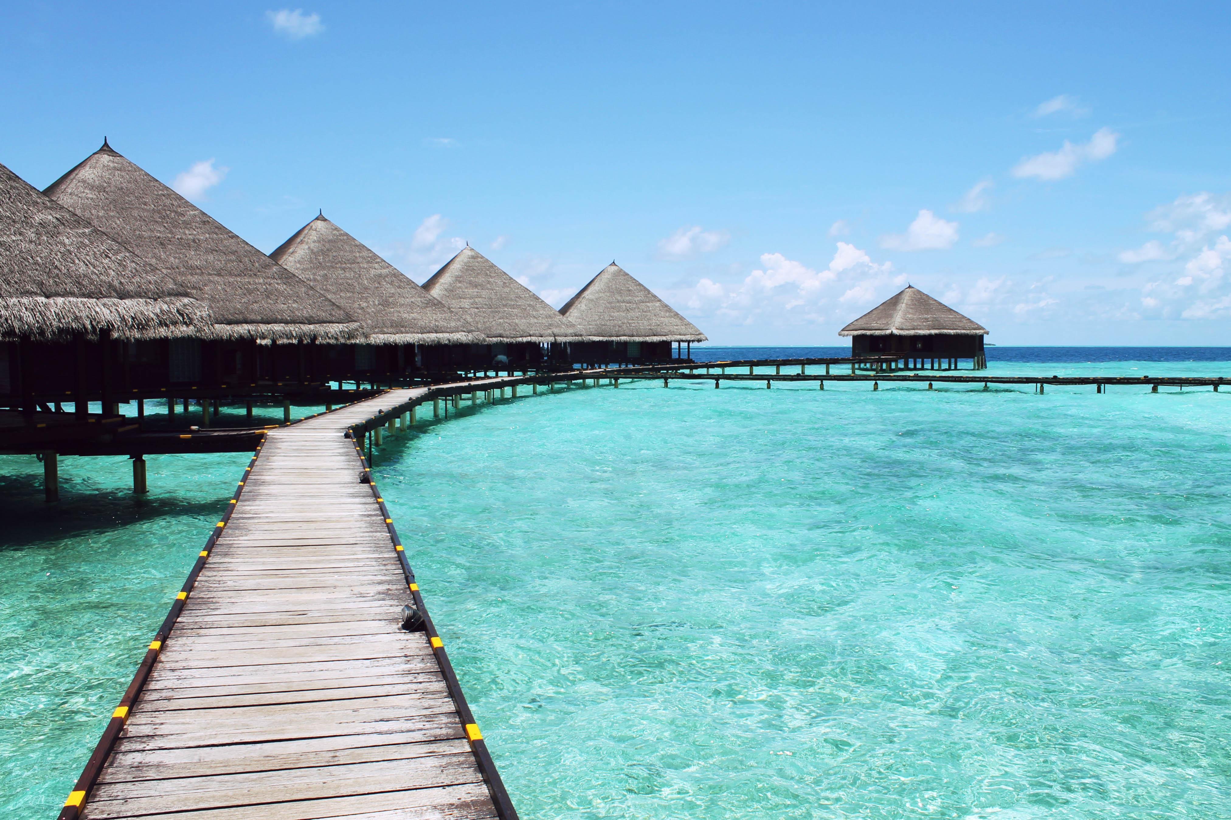 Znalezione obrazy dla zapytania vacation