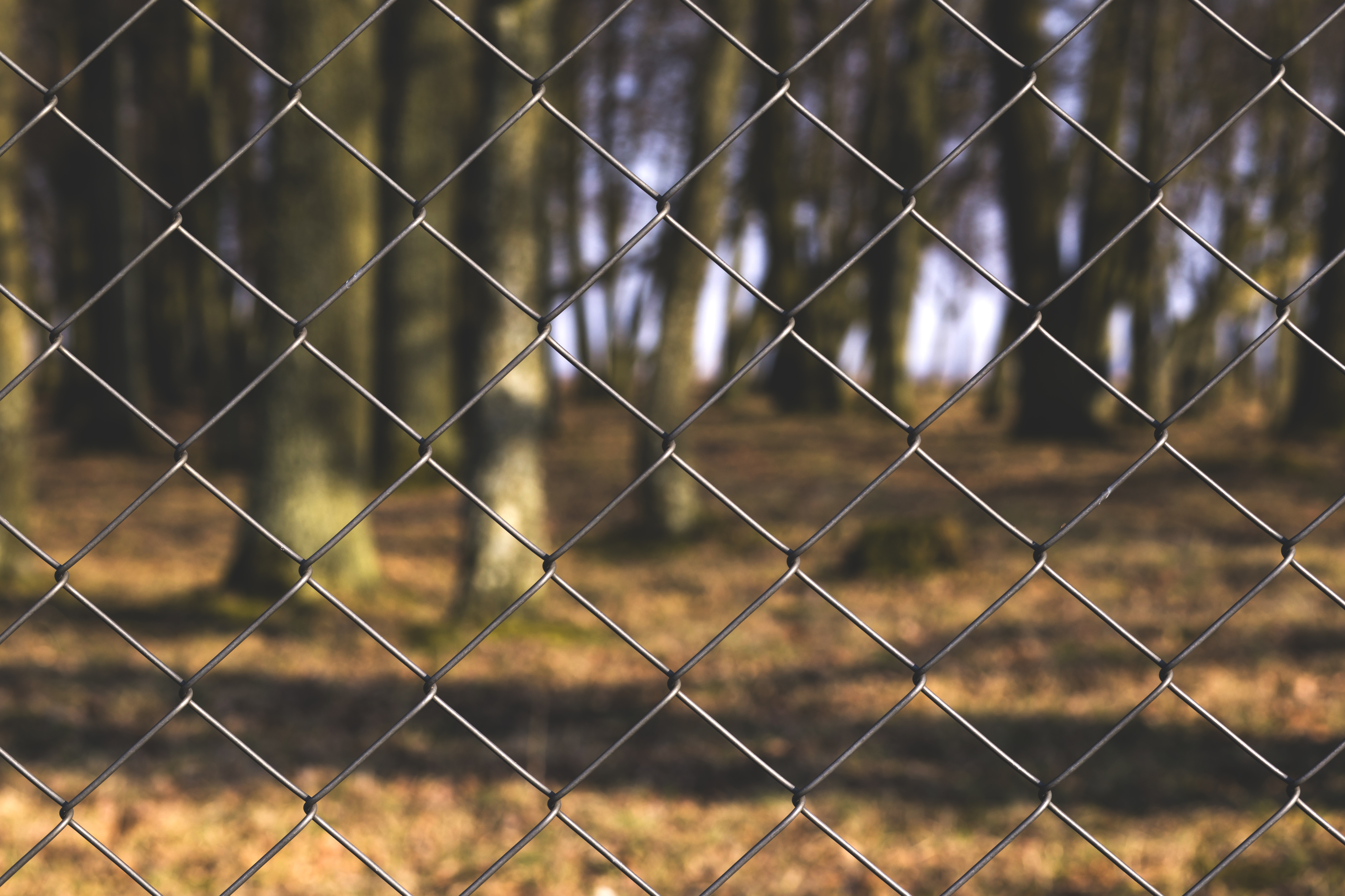 free stock photos of chain link fence pexels