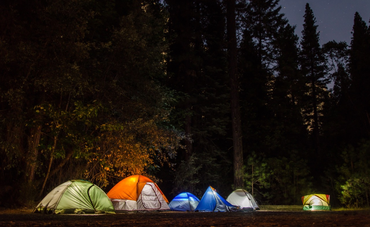 Six Camping Tents in Forest · Free Stock Photo Camping Forest Wallpaper