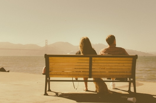 Free stock photo of bench, sea, sunny, man