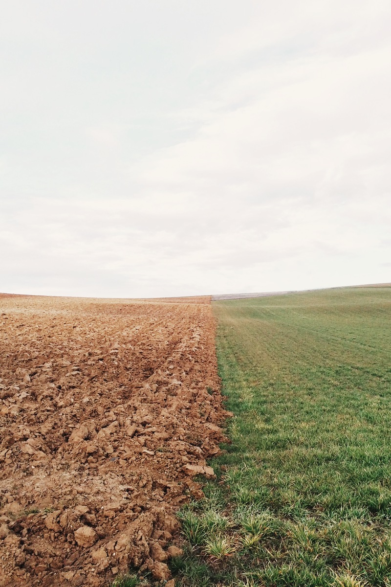 compare and contrast of agriculture technology Subsistence agriculture consists of any agricultural economy in which the crops and  the essential contrast between them is  the technology to exploit.