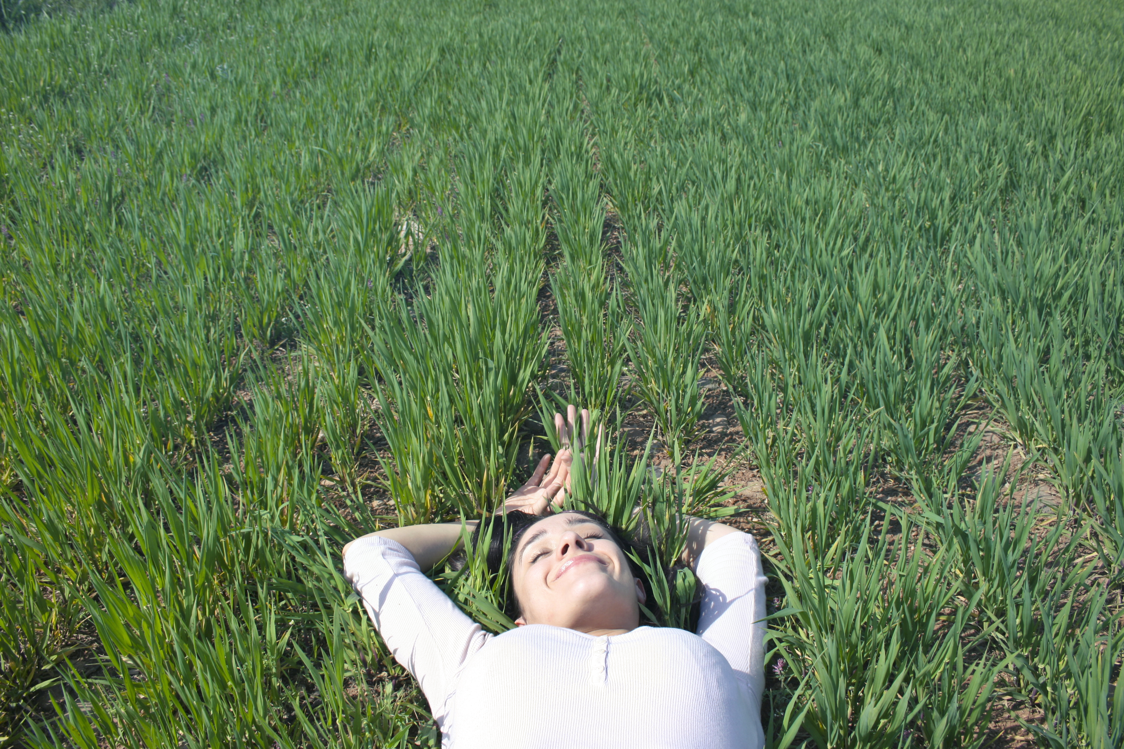 Woman Laying on Field of Green Grass · Free Stock Photo