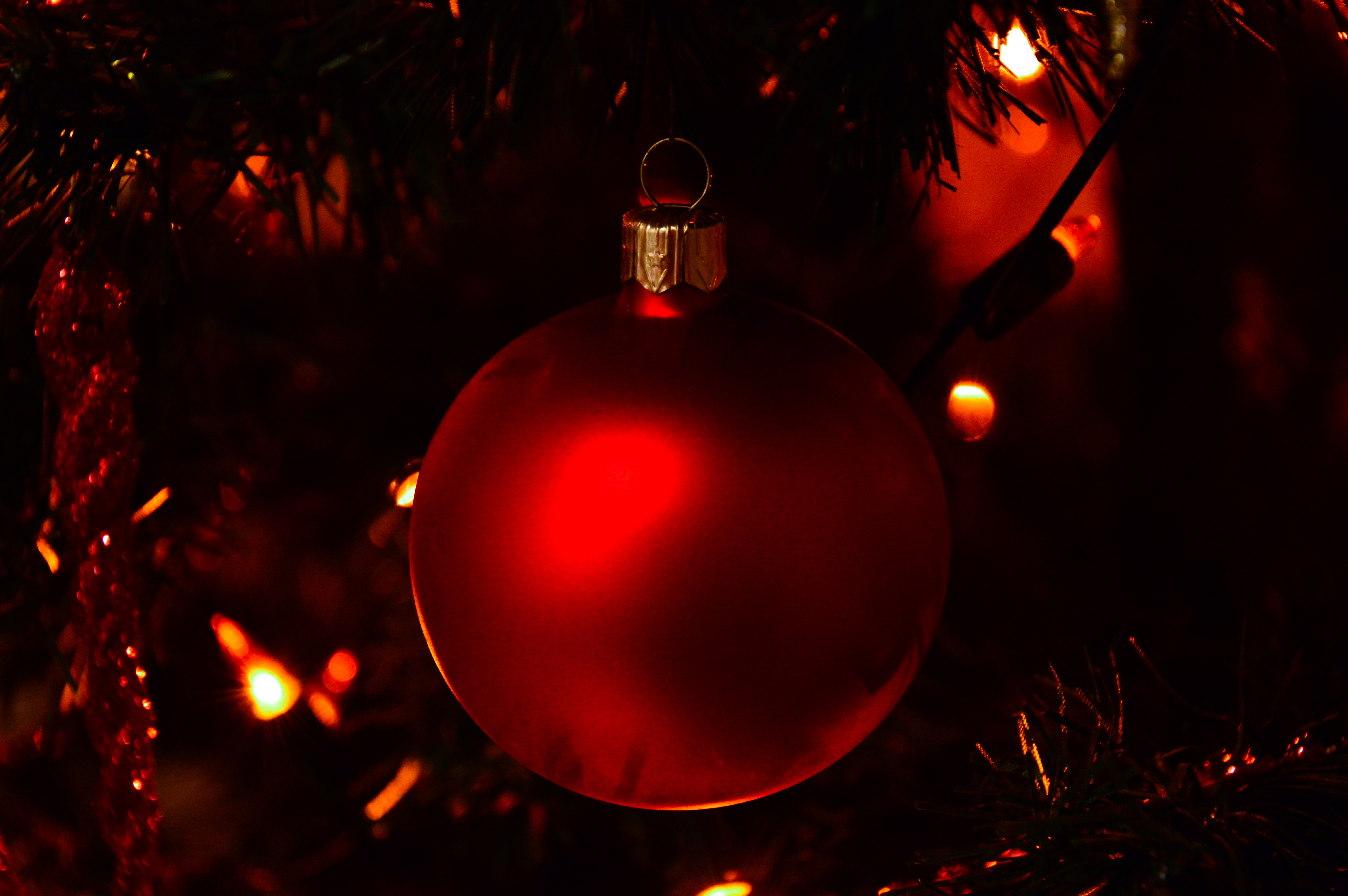 free download - Red Christmas Tree Lights
