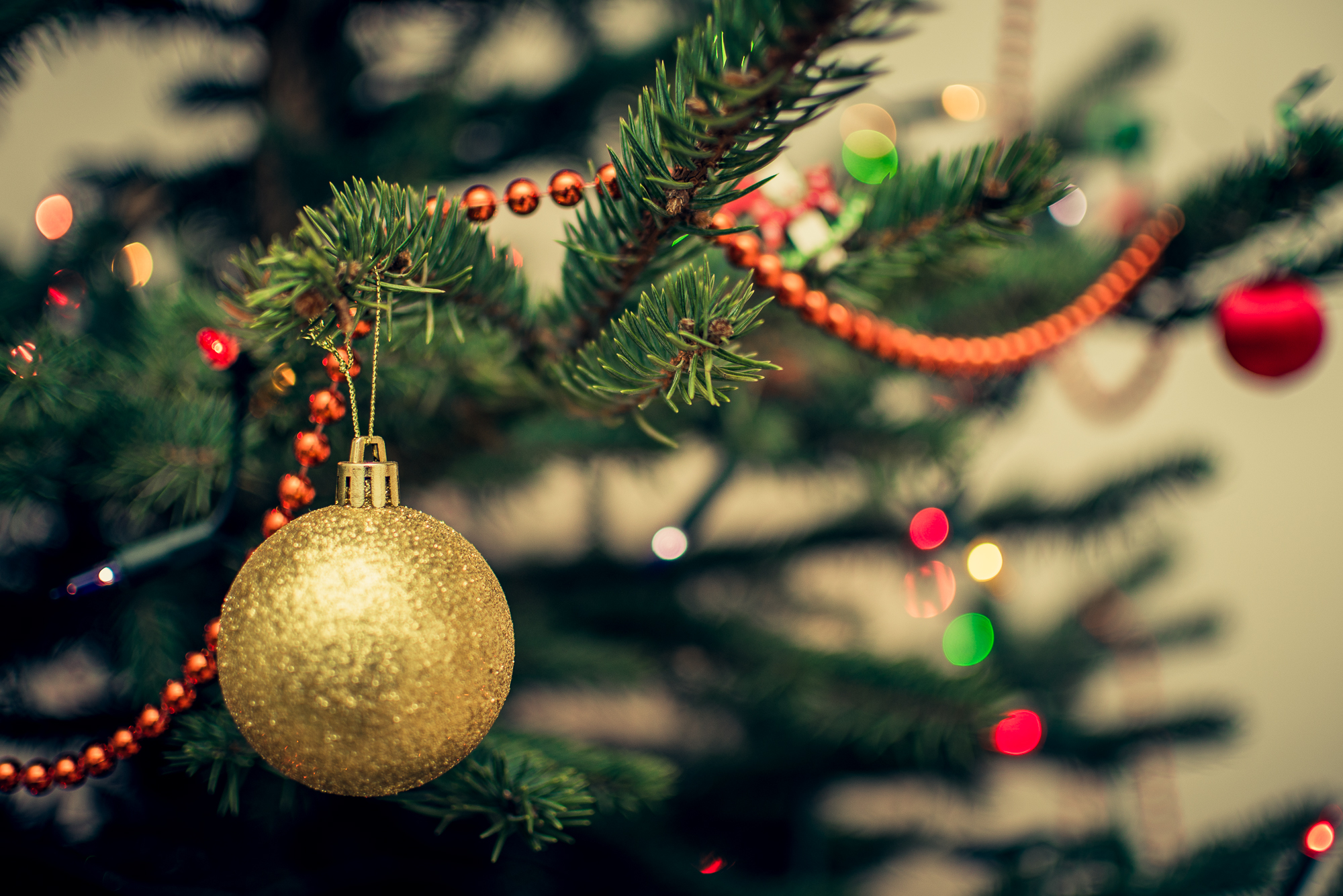 Yellow bauble on christmas tree free stock photo for Holiday themed facebook cover photos