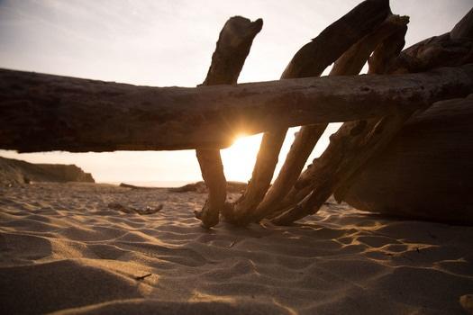 Free stock photo of wood, sea, sunset, beach