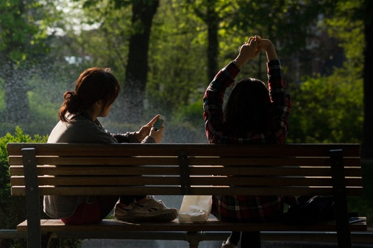 Free stock photo of bench, people, smartphone, sun