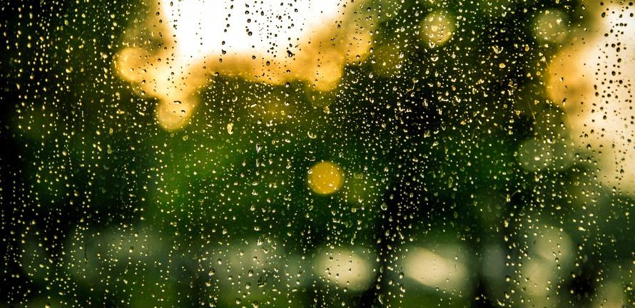 water, rain, raindrops, window