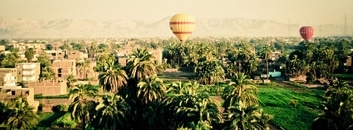 summer, palms, transportation