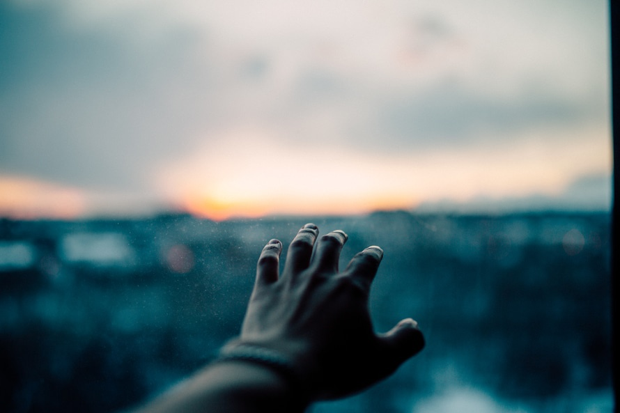 Close Up Photograph of Human Hand during Sunset