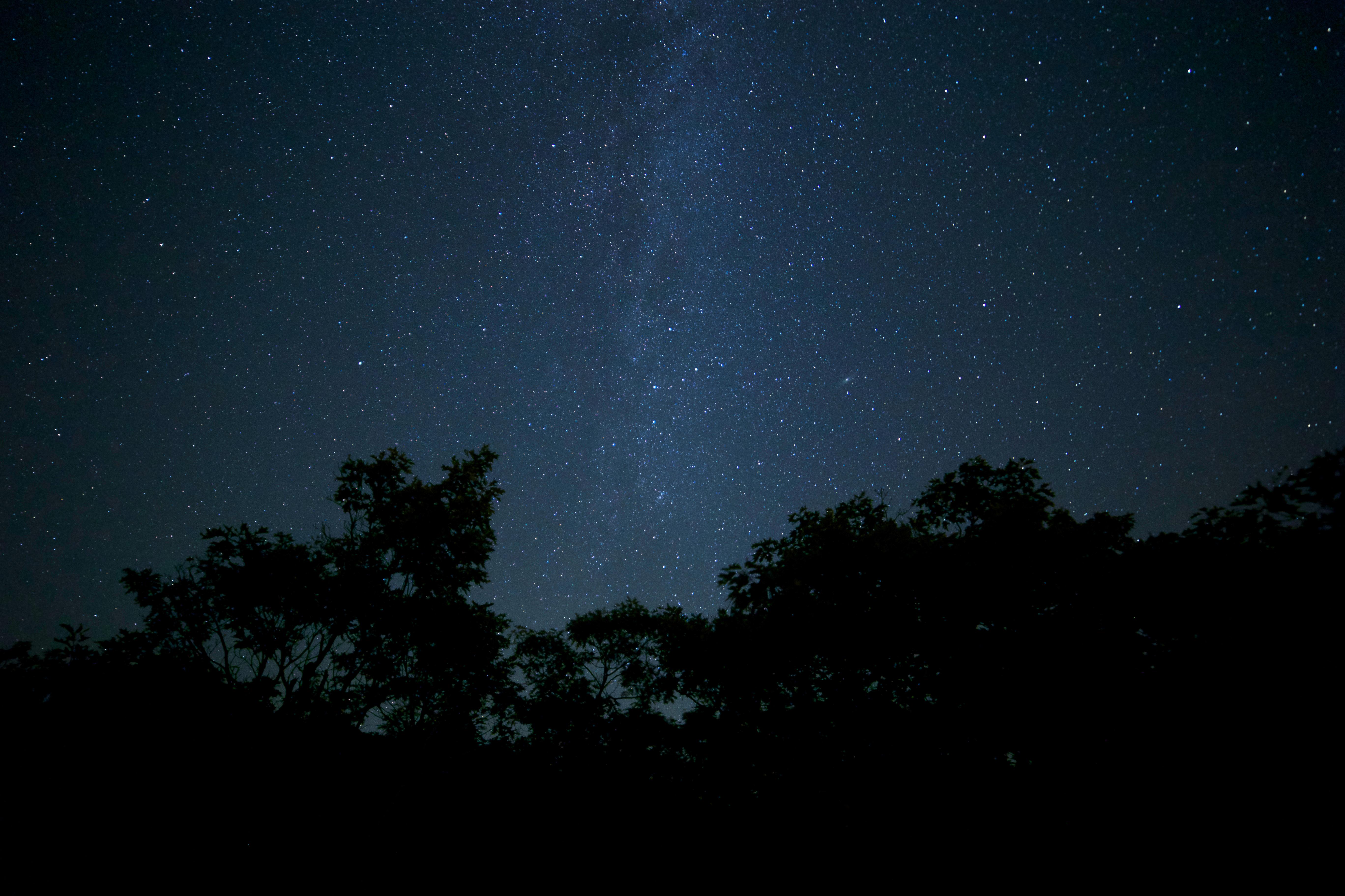 Respirar (Enril) - Relato Night-trees-milky-way-stars