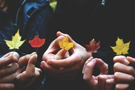 hands, autumn, colors