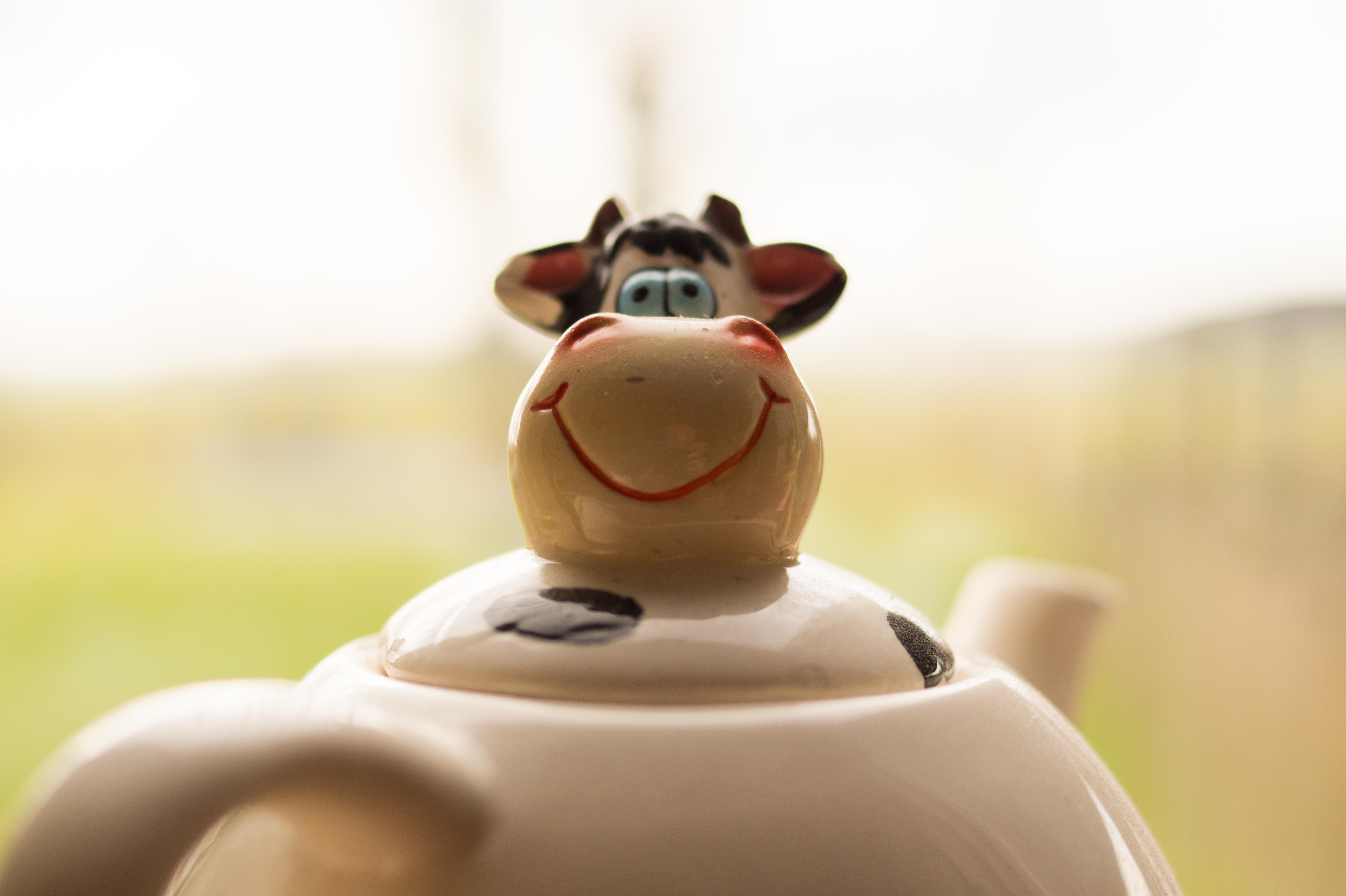 tea-cow-life-living-room.jpg (5349×3561)